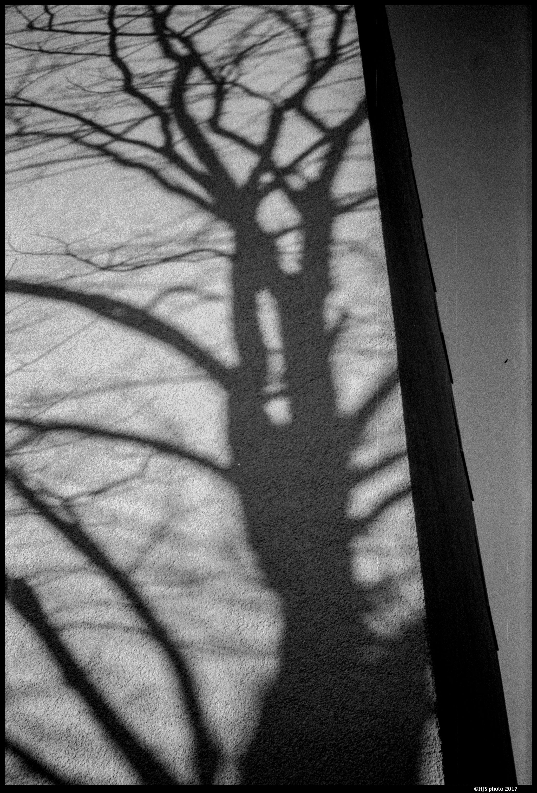 Forms and shadows photo
