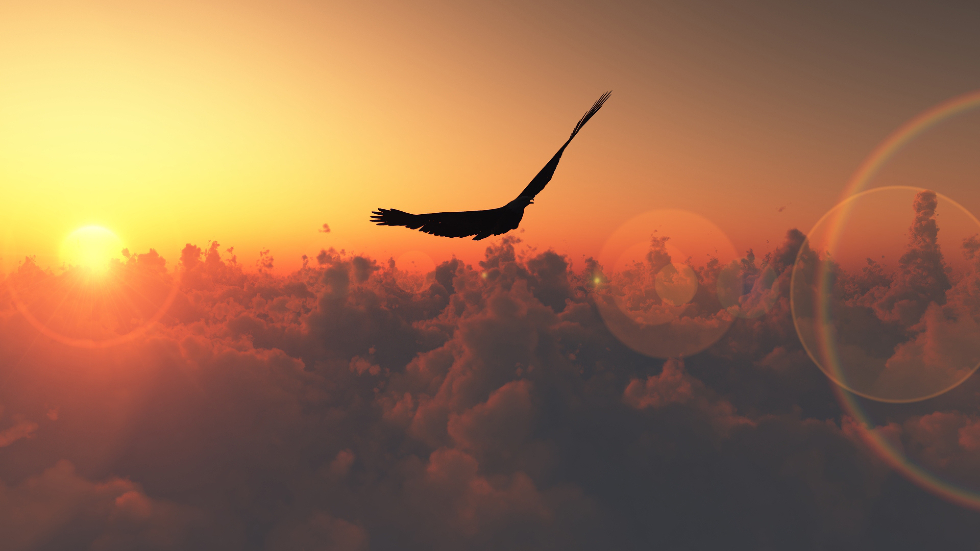41+ Best & Inspirational High Quality Freedom Backgrounds ...