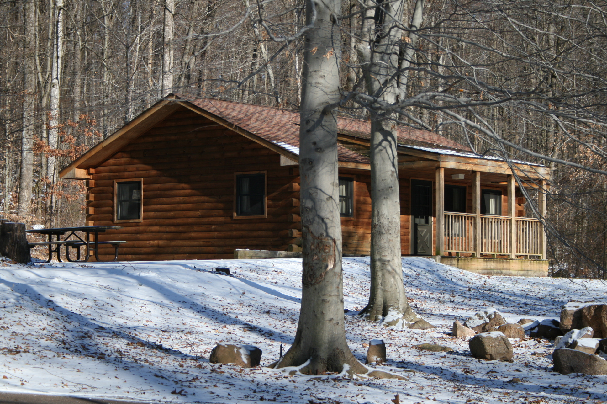 Free Photo French Creek State Park Cabins Shack Park