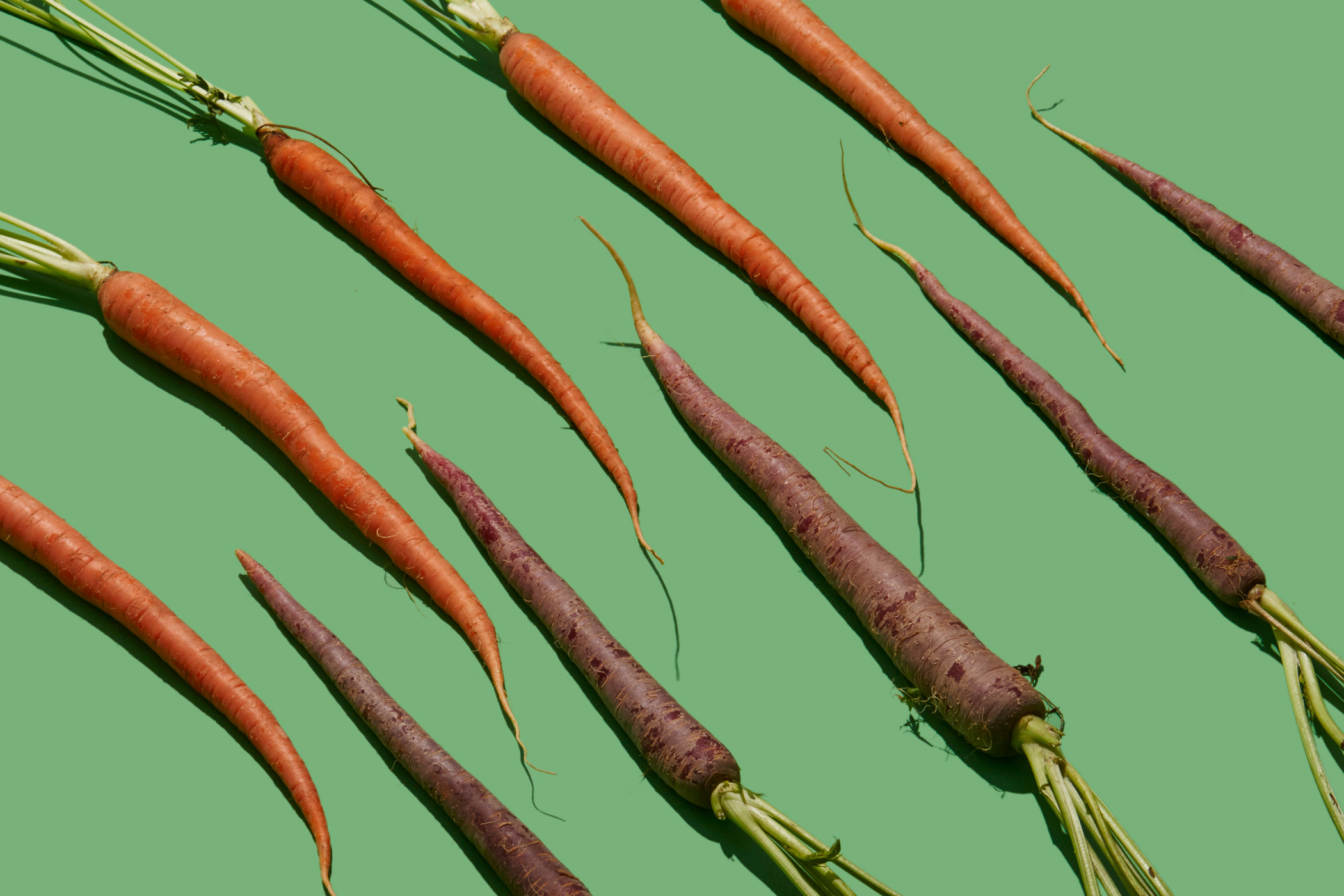 7 Vegetables That Stay Fresh for Months | Time