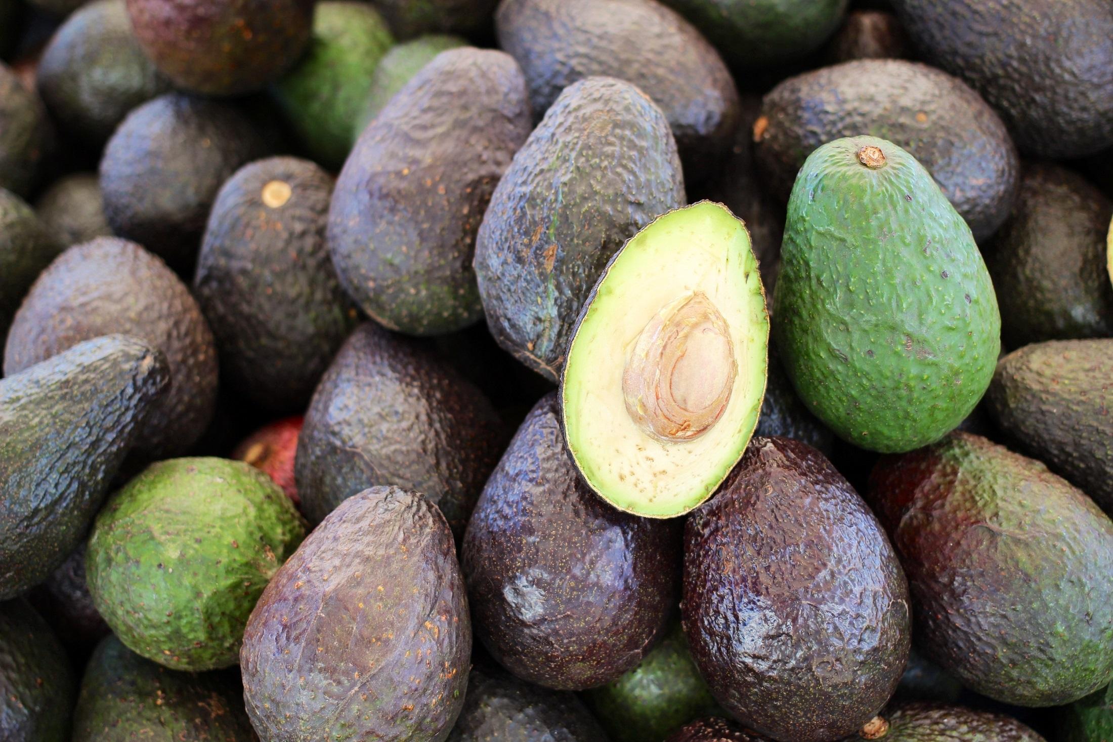 Fresh avocados photo