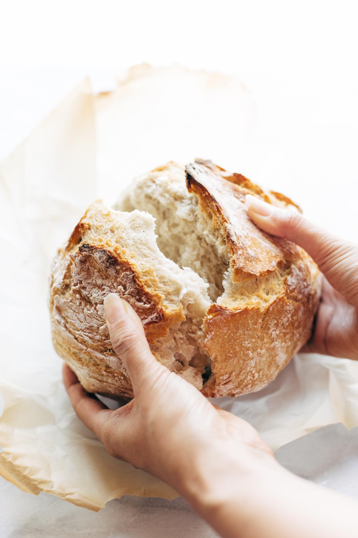 Miracle No Knead Bread Recipe - Pinch of Yum