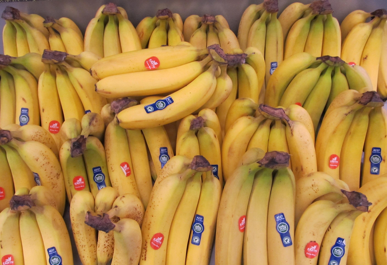 Fresh banana photo