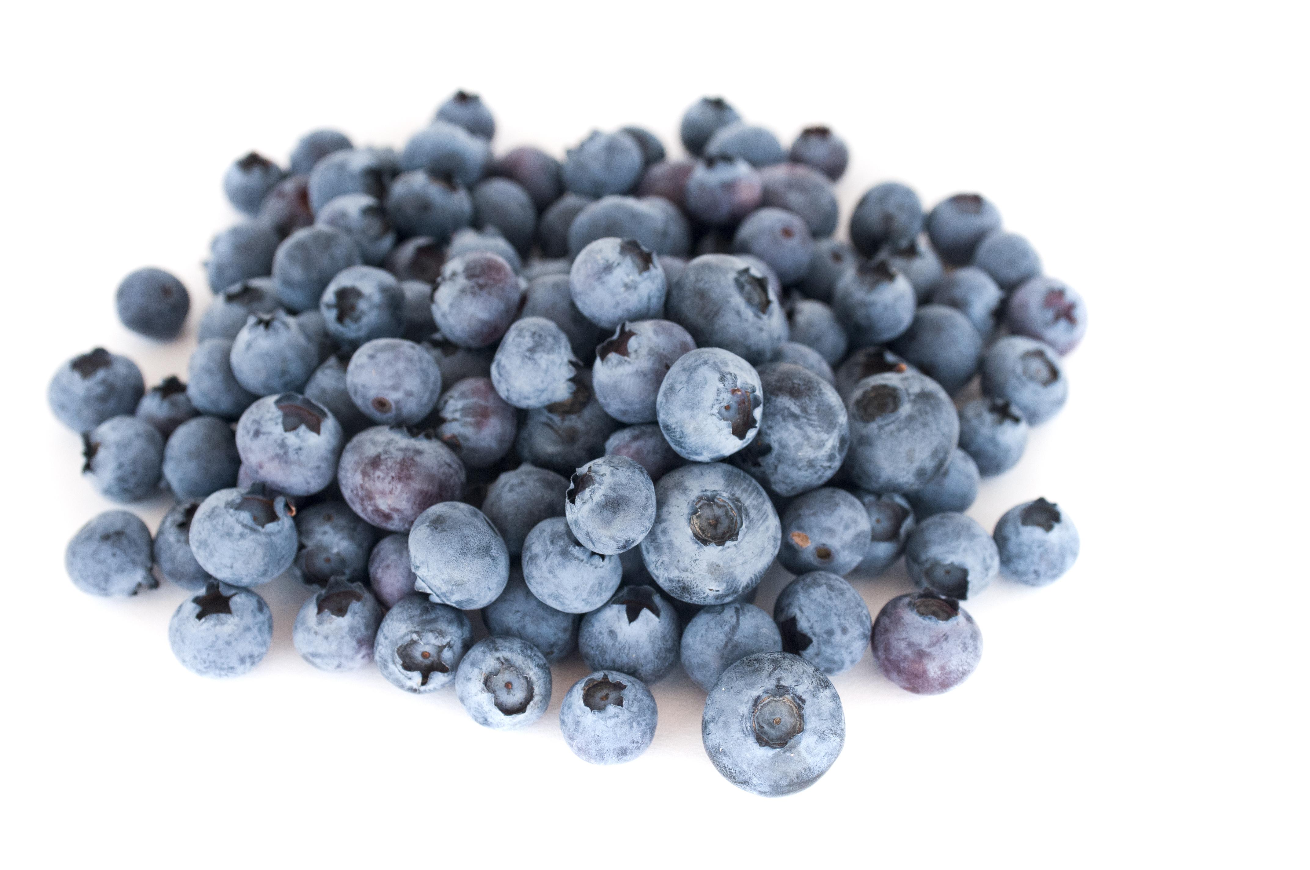 Fresh Blueberries, Isolated, Sweet, Vitamins, Fruit, HQ Photo
