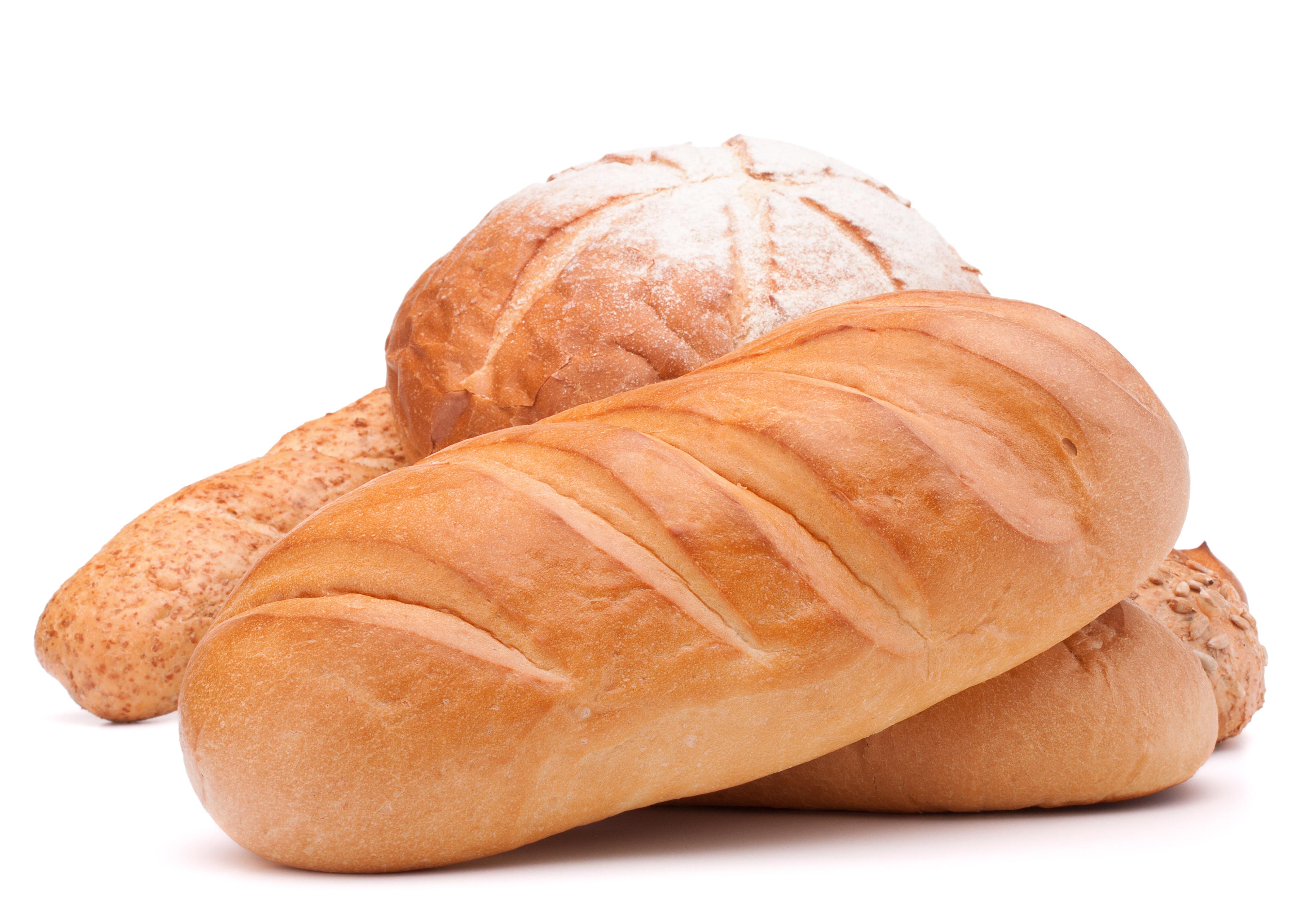 Zojirushi BB-PAC20 VS Zojirushi BB-CEC20: Bread Maker Comparison ...