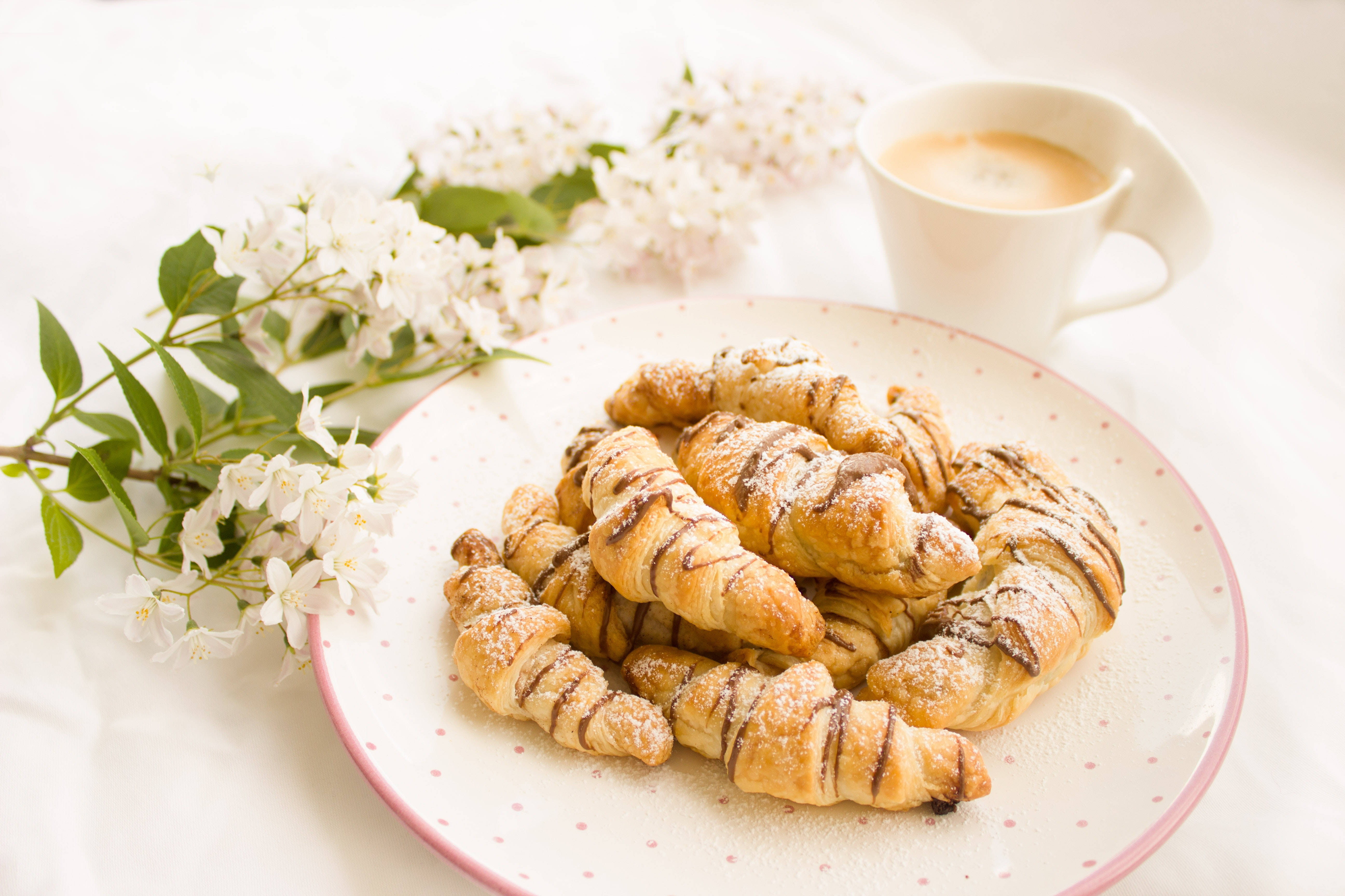 Fresh Breakfast in Plate, Breakfast, Hot, Vegetable, Traditional, HQ Photo