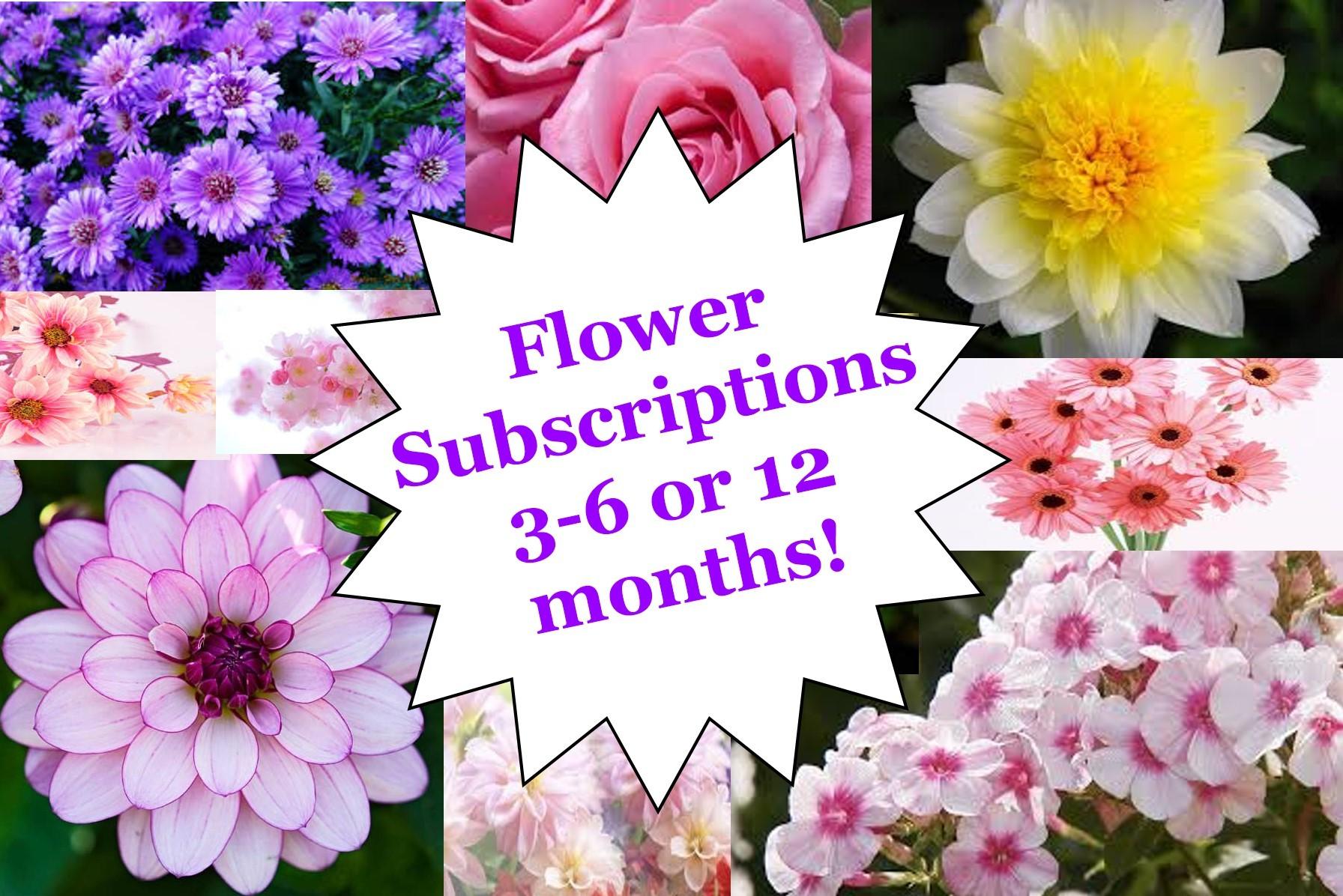 Subscription of Fresh Flowers in Berlin, NJ | MaryJane's Flowers & Gifts