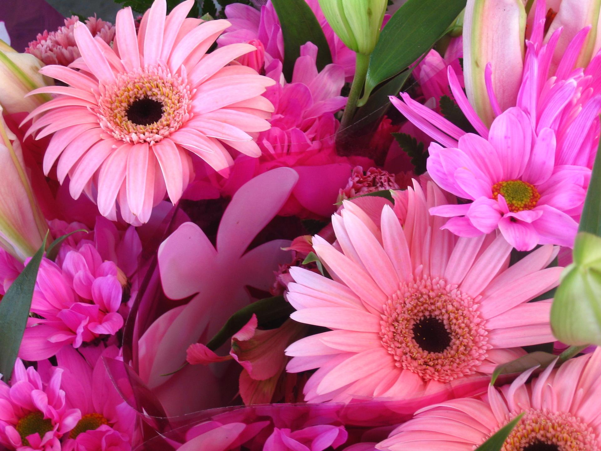 Should you send fresh flowers or silk flowers? - Flower PressFlower ...