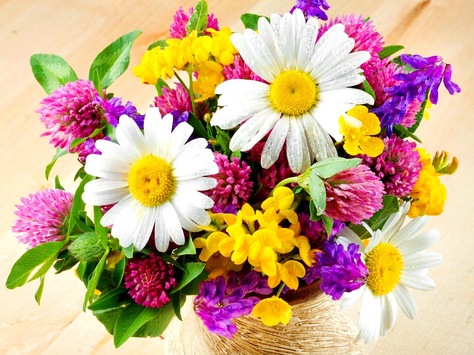 Beautiful Fresh Flowers ~ Flowers Wallpapers