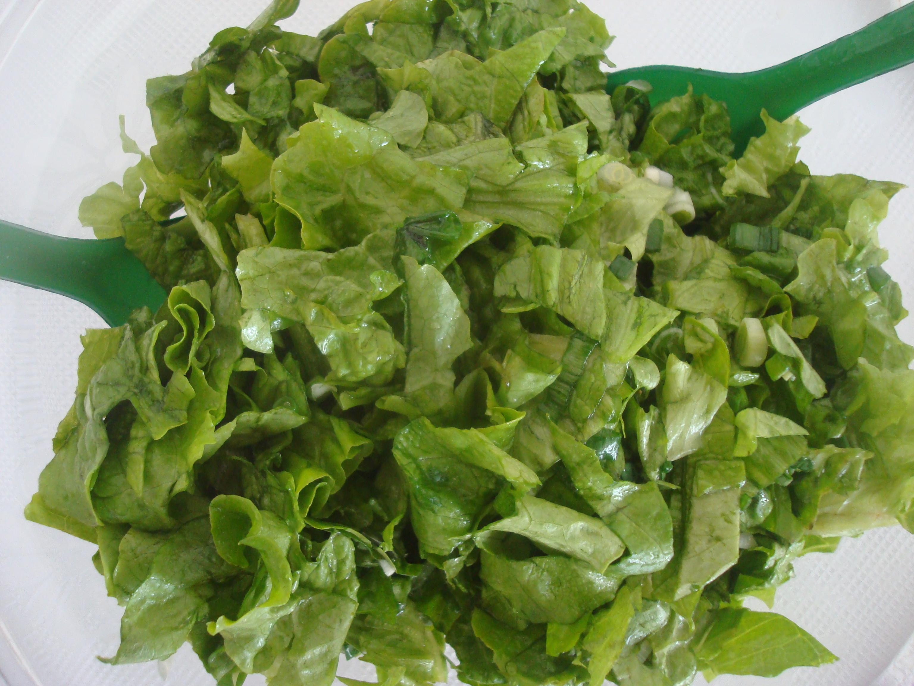 Fresh green salad, Dinner, Lunch, Vegetarian, Vegan, HQ Photo