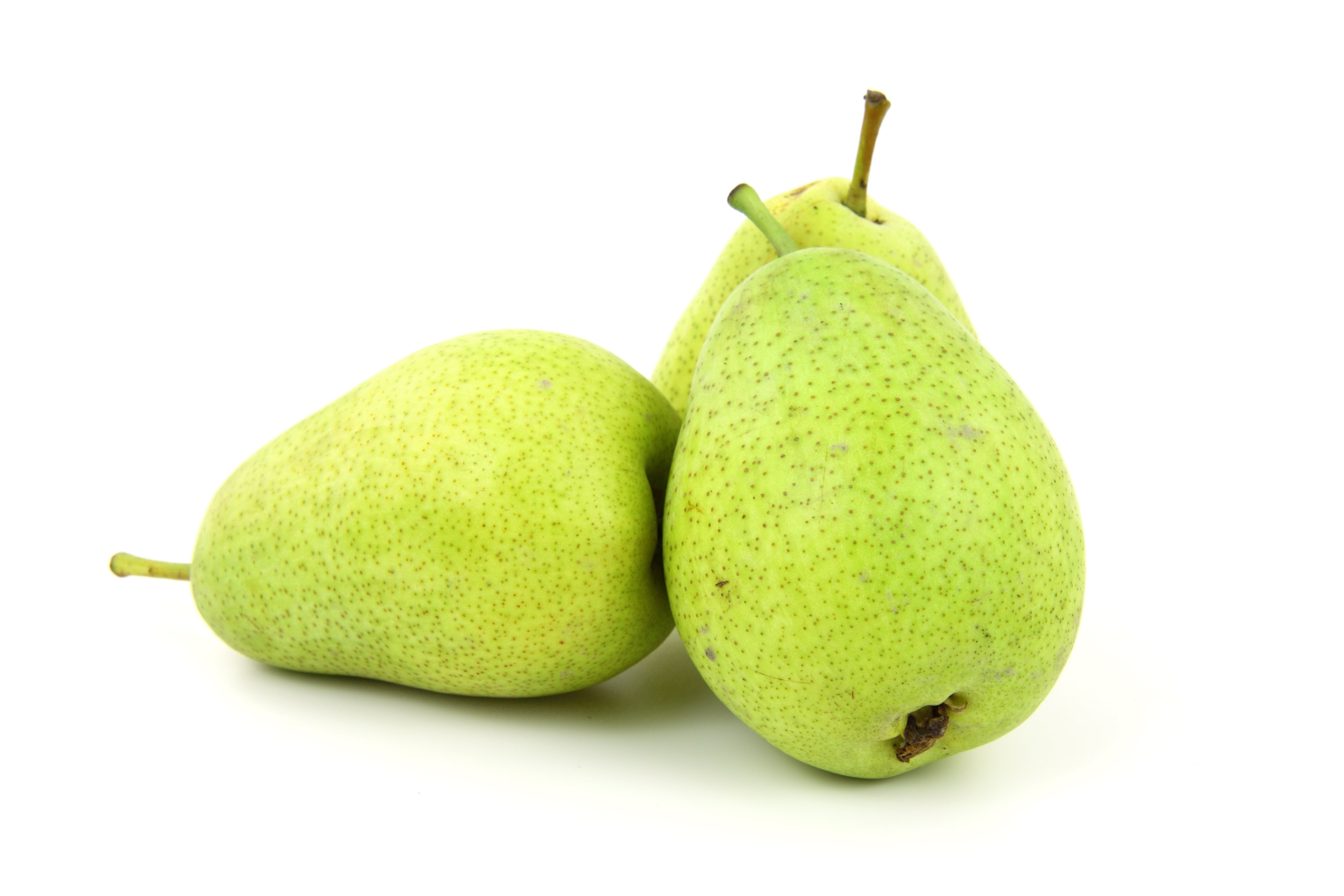 Fresh pear photo