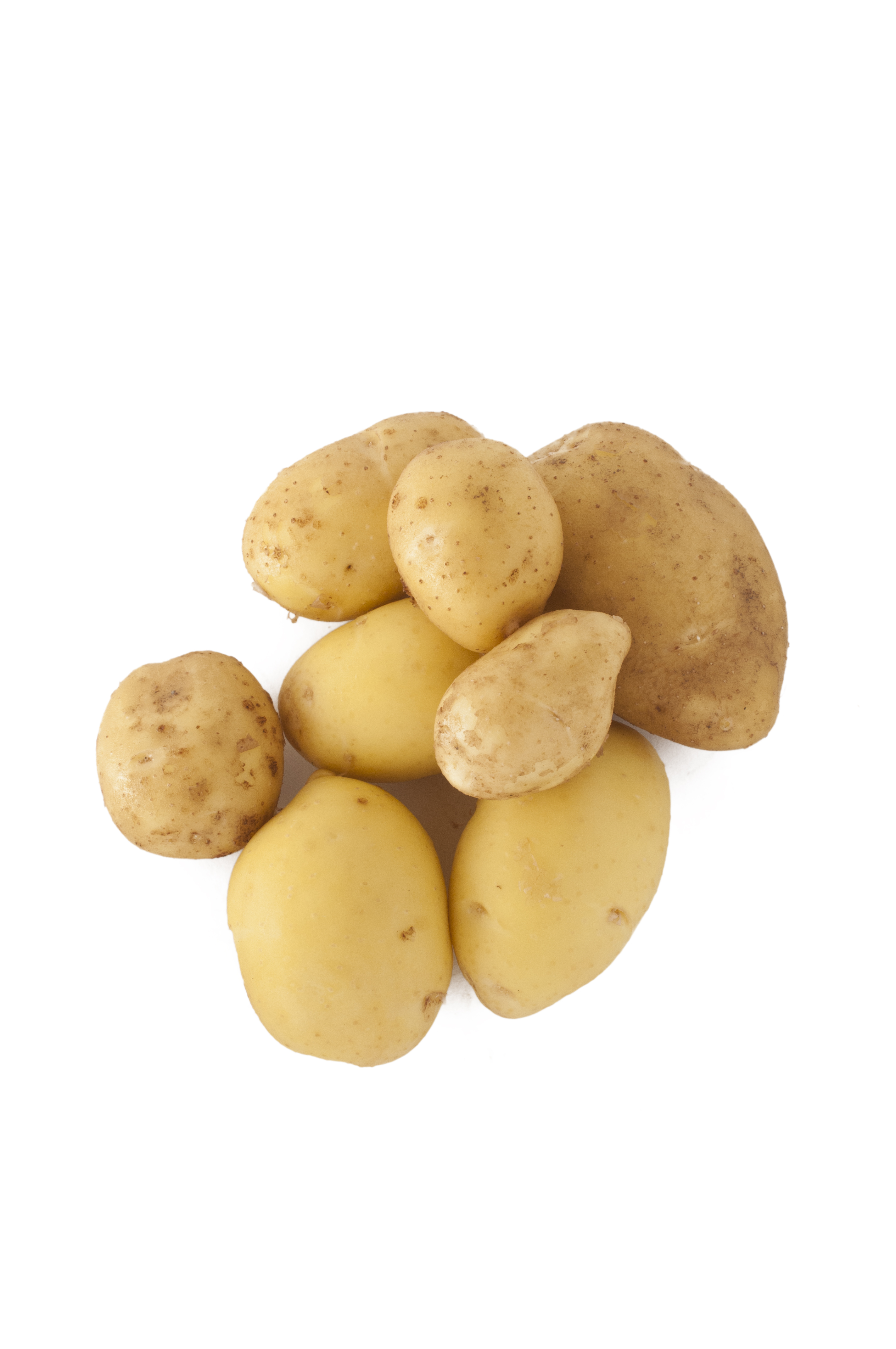 Fresh Potatoes, Tuberous, Vegetable, Starchy, Fresh, HQ Photo