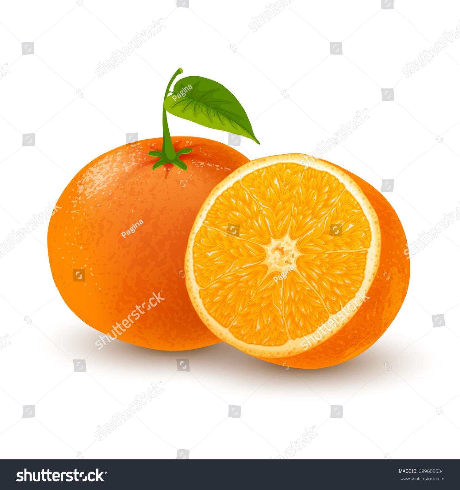 Fresh Ripe Orange Tangerine Whole Leaf Stock Vector HD (Royalty Free ...