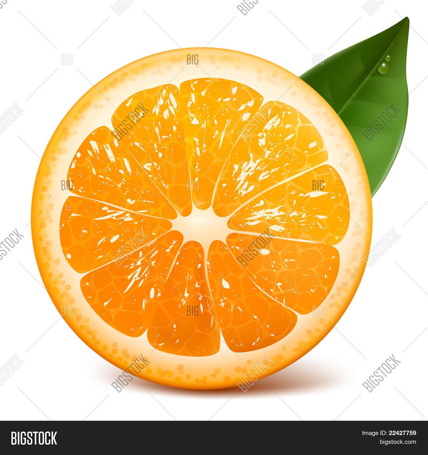 Fresh Ripe Orange Leaf. Raster Image & Photo | Bigstock