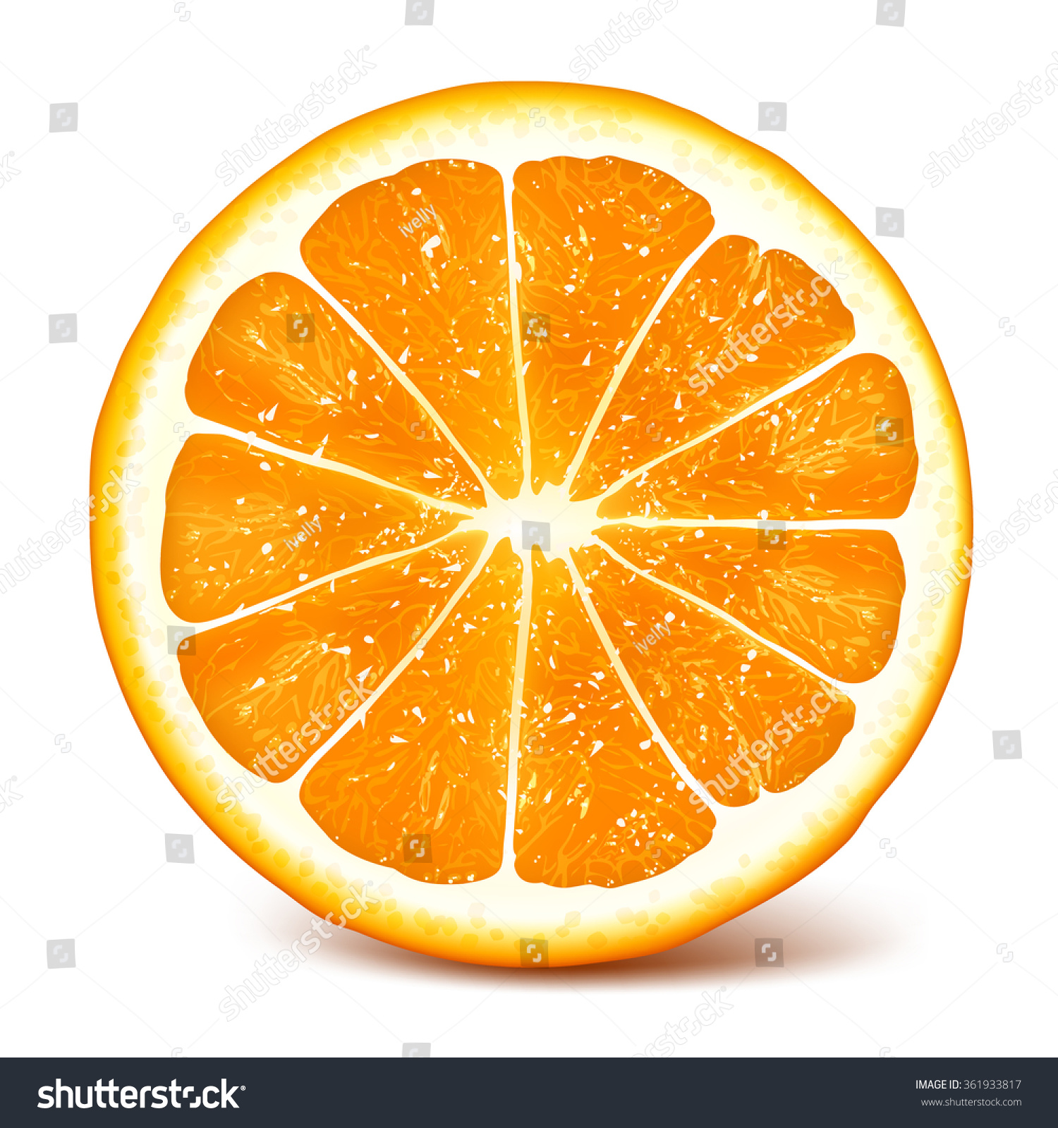 Cut Fresh Ripe Orange Fully Editable Stock Vector 361933817 ...