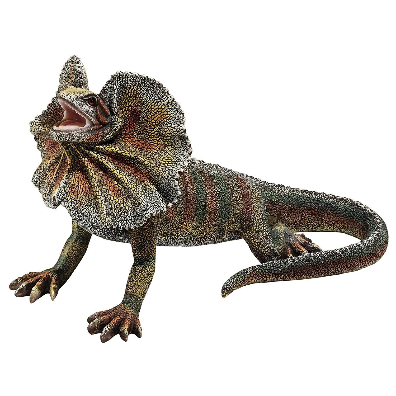 Amazon.com : Design Toscano Frill-Necked Lizard Statue : Garden ...