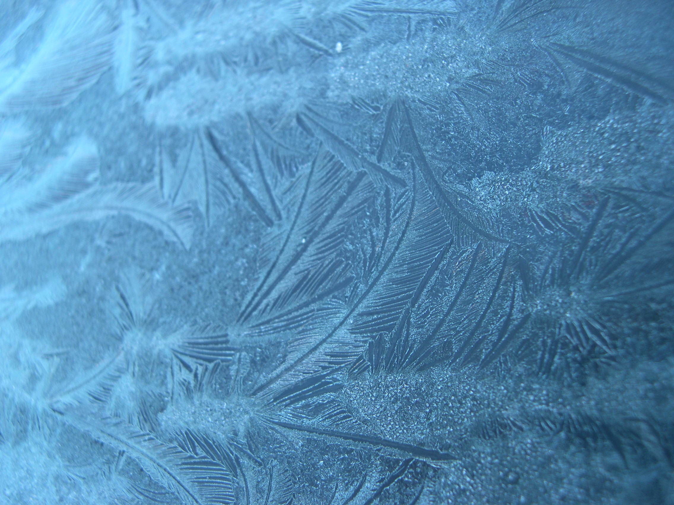 Frost patterns on glass photo