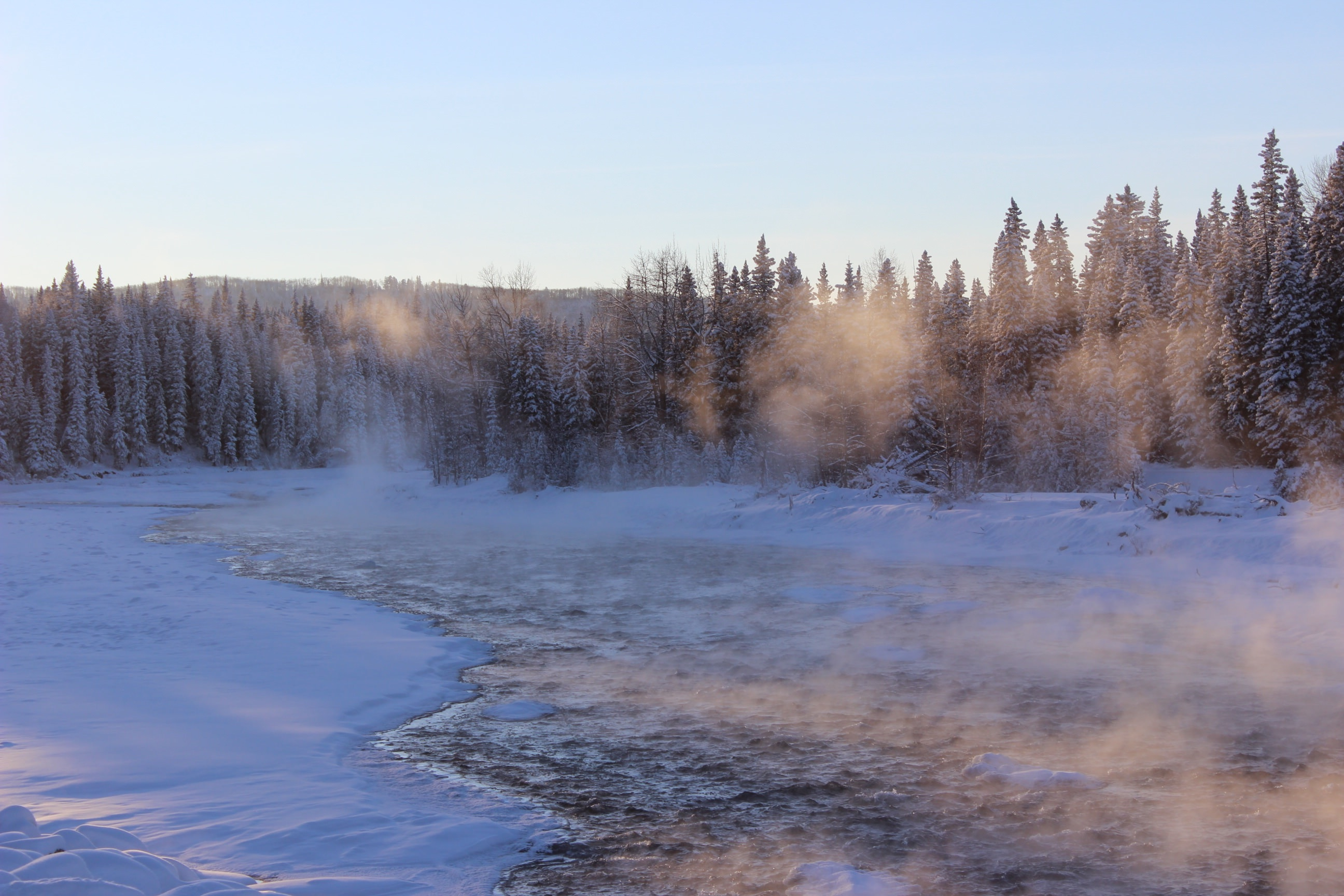 Frozen, Cold, Freeze, Ice, Snow, HQ Photo