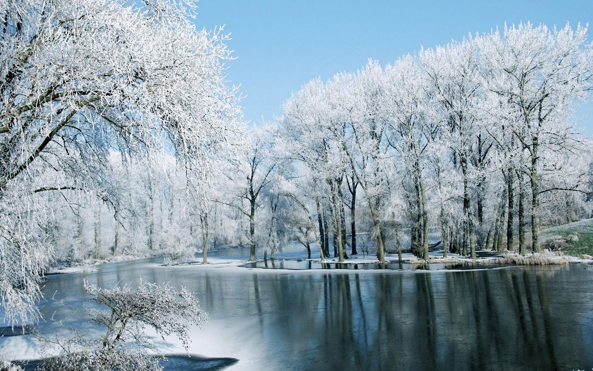 Free photo: Winter lake - Cold, Lake, Landscape - Free ...