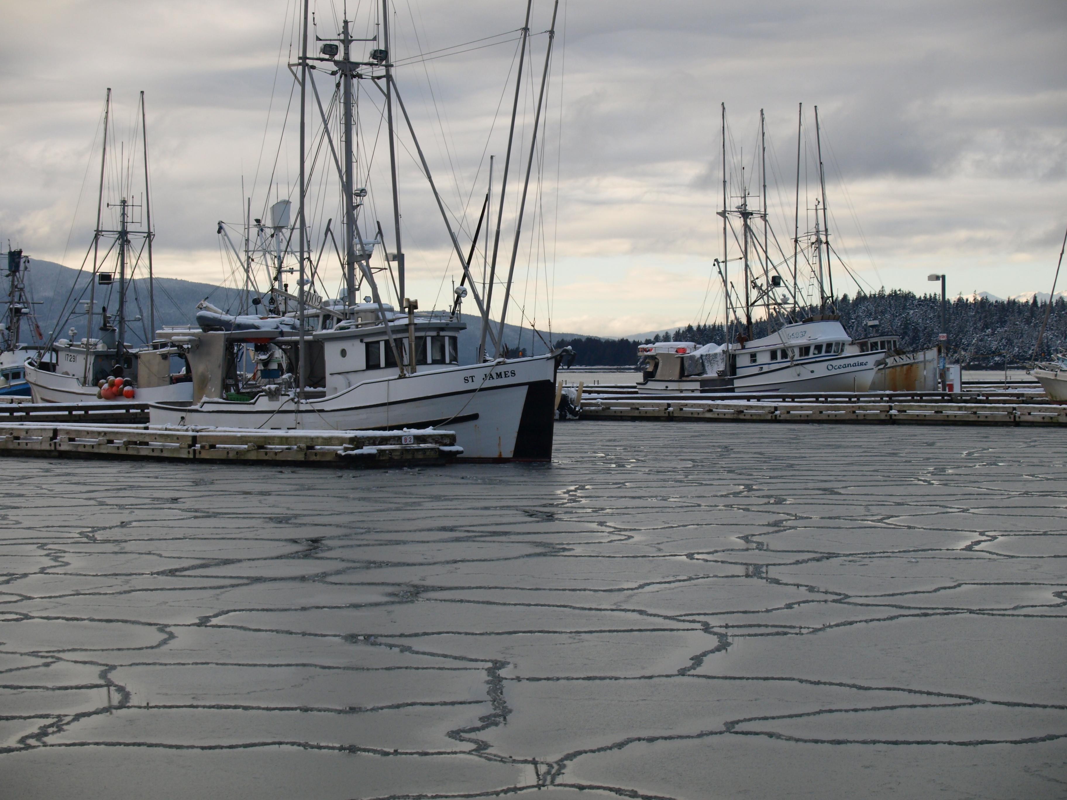Frozen harbor photo