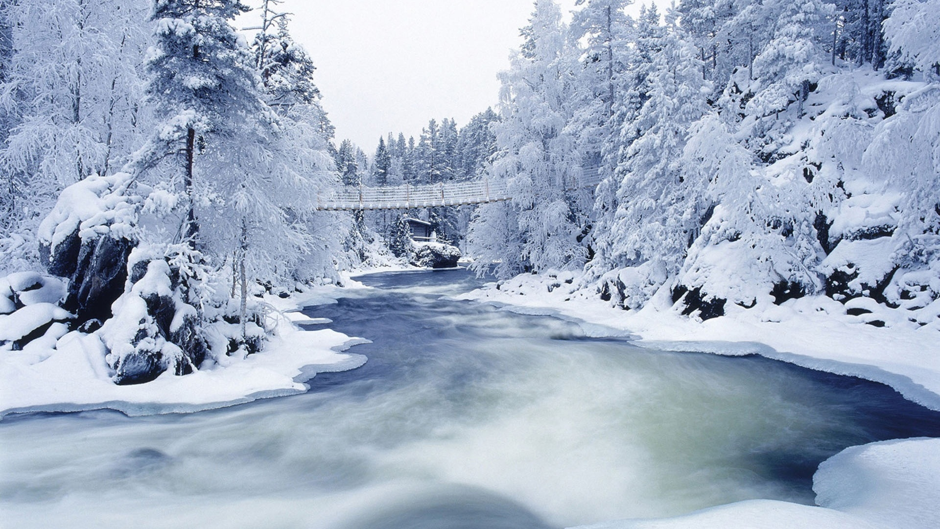 Frozen river and trees wallpapers | Frozen river and trees stock photos