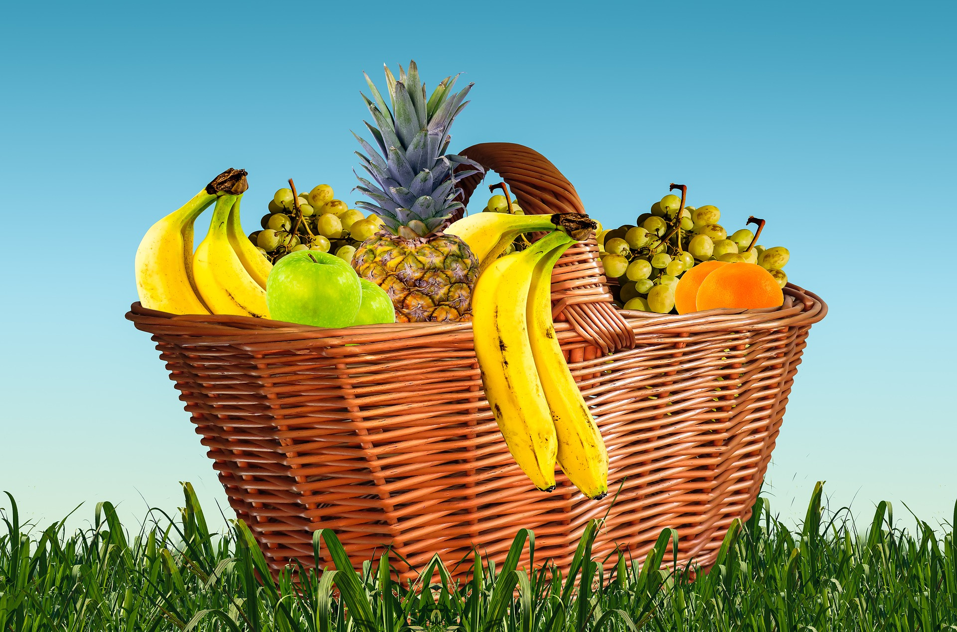 Fruit Basket, Banana, Basket, Food, Fruit, HQ Photo