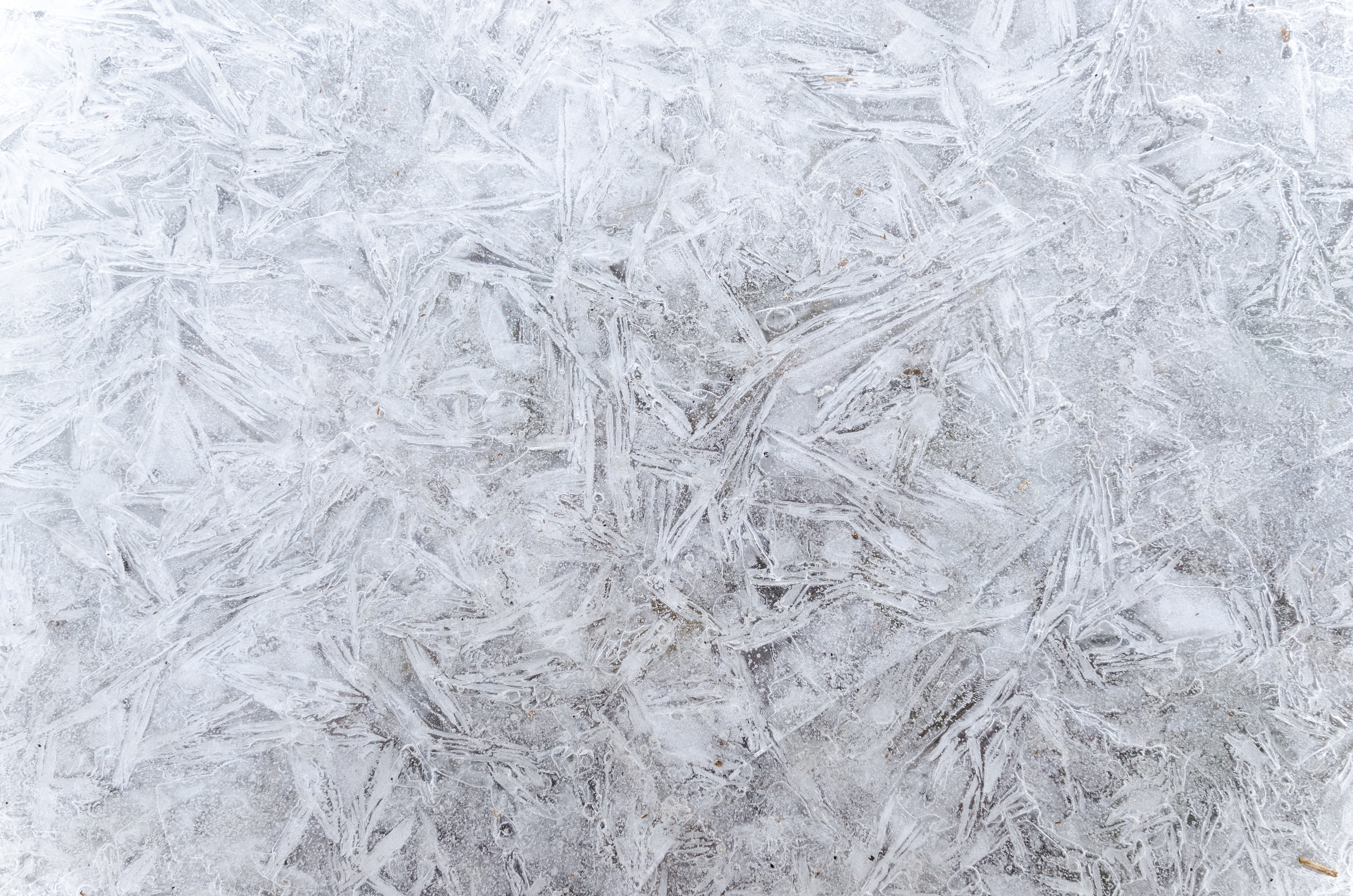 Full frame shot of snowflakes photo