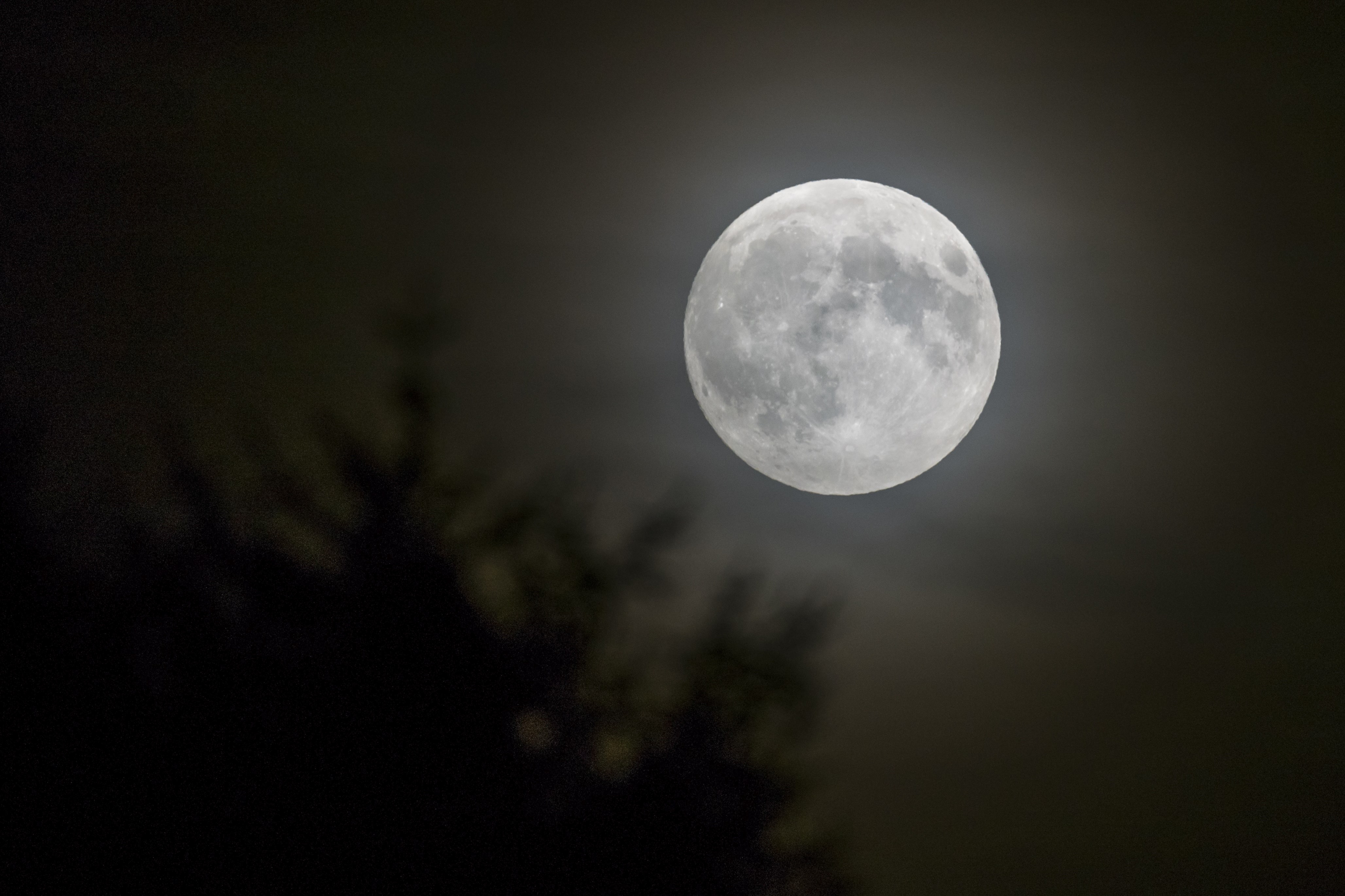 5 Ways The Full Moon Supposedly Affects Human Behavior