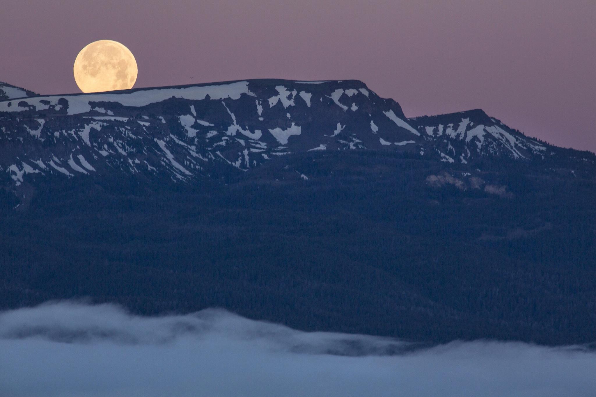 Full Moon, Full, Landscape, Moon, Mount, HQ Photo