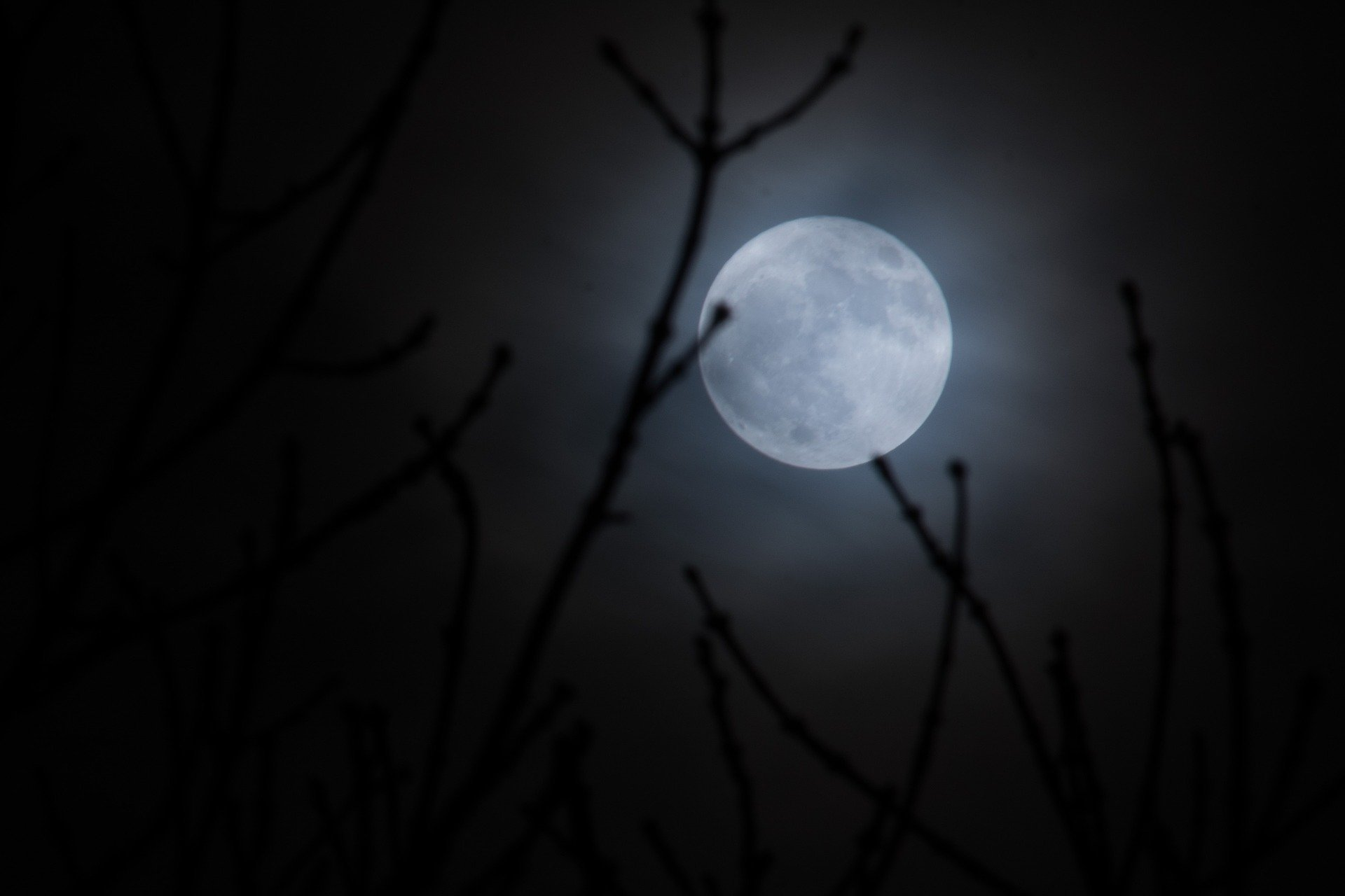 Full moon linked to increased risk of fatal motorcycle crashes