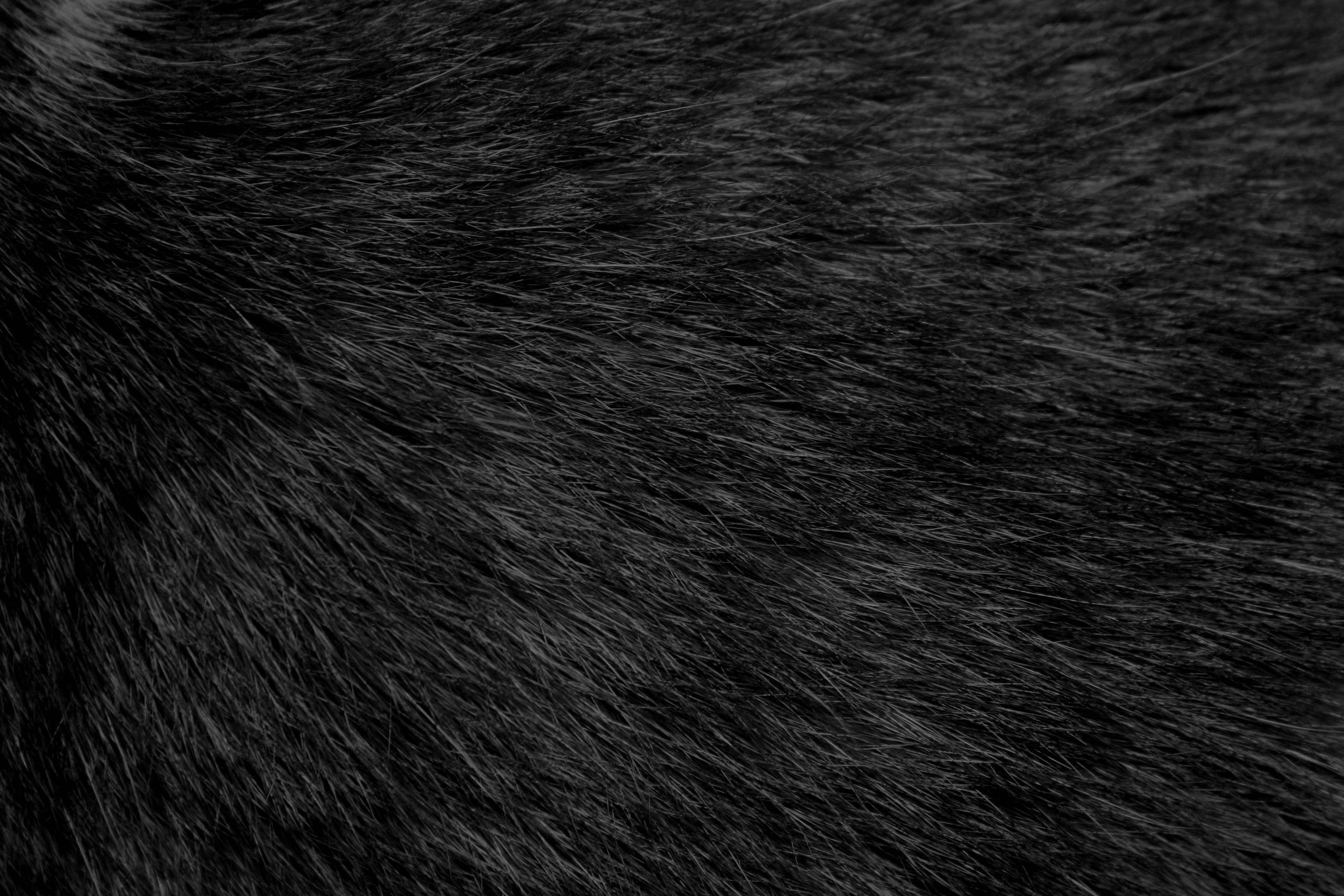 Pin by K P on texture | Pinterest | deviantART