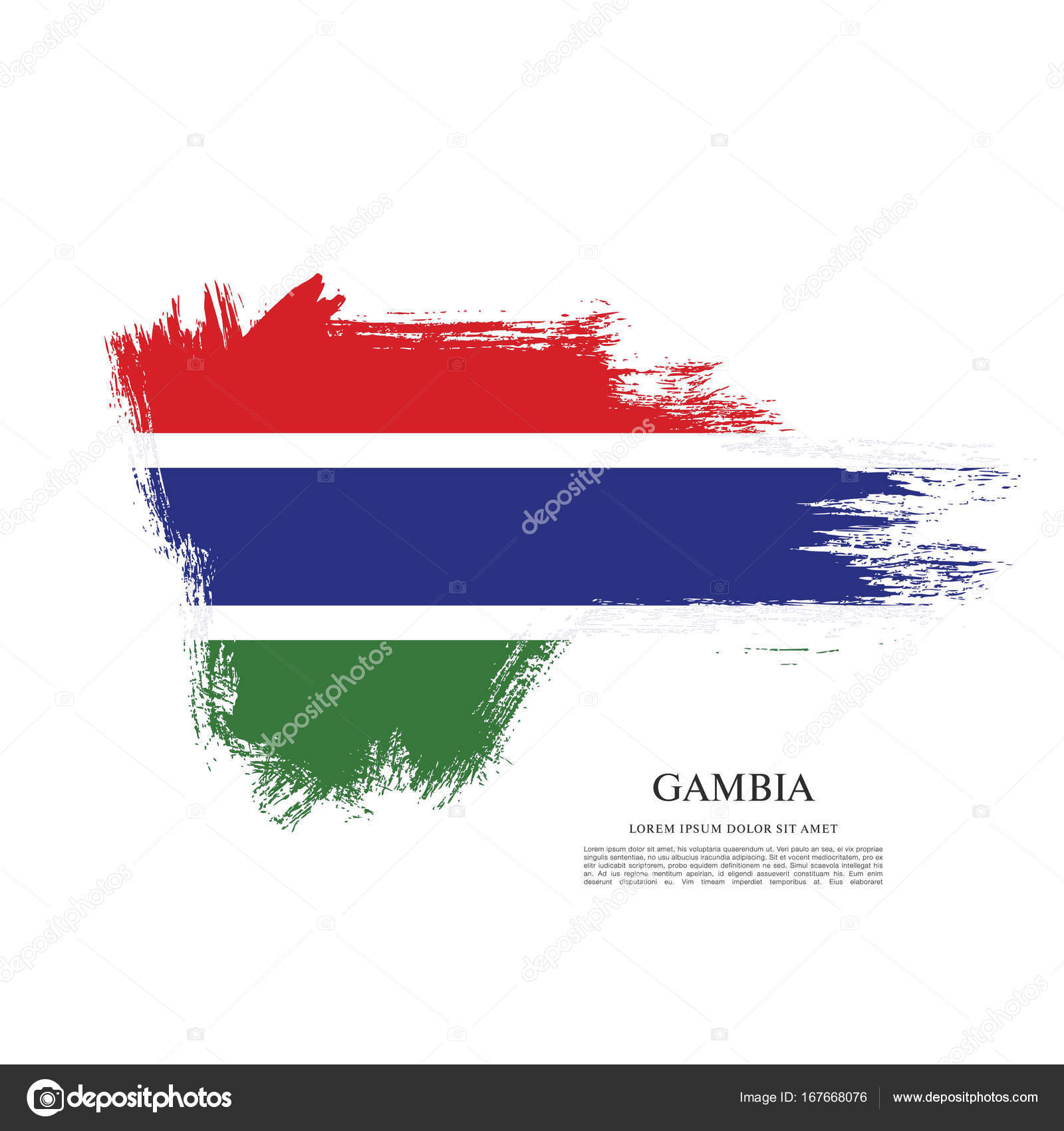 texture with flag of Gambia — Stock Vector © Igor_Vkv #167668076