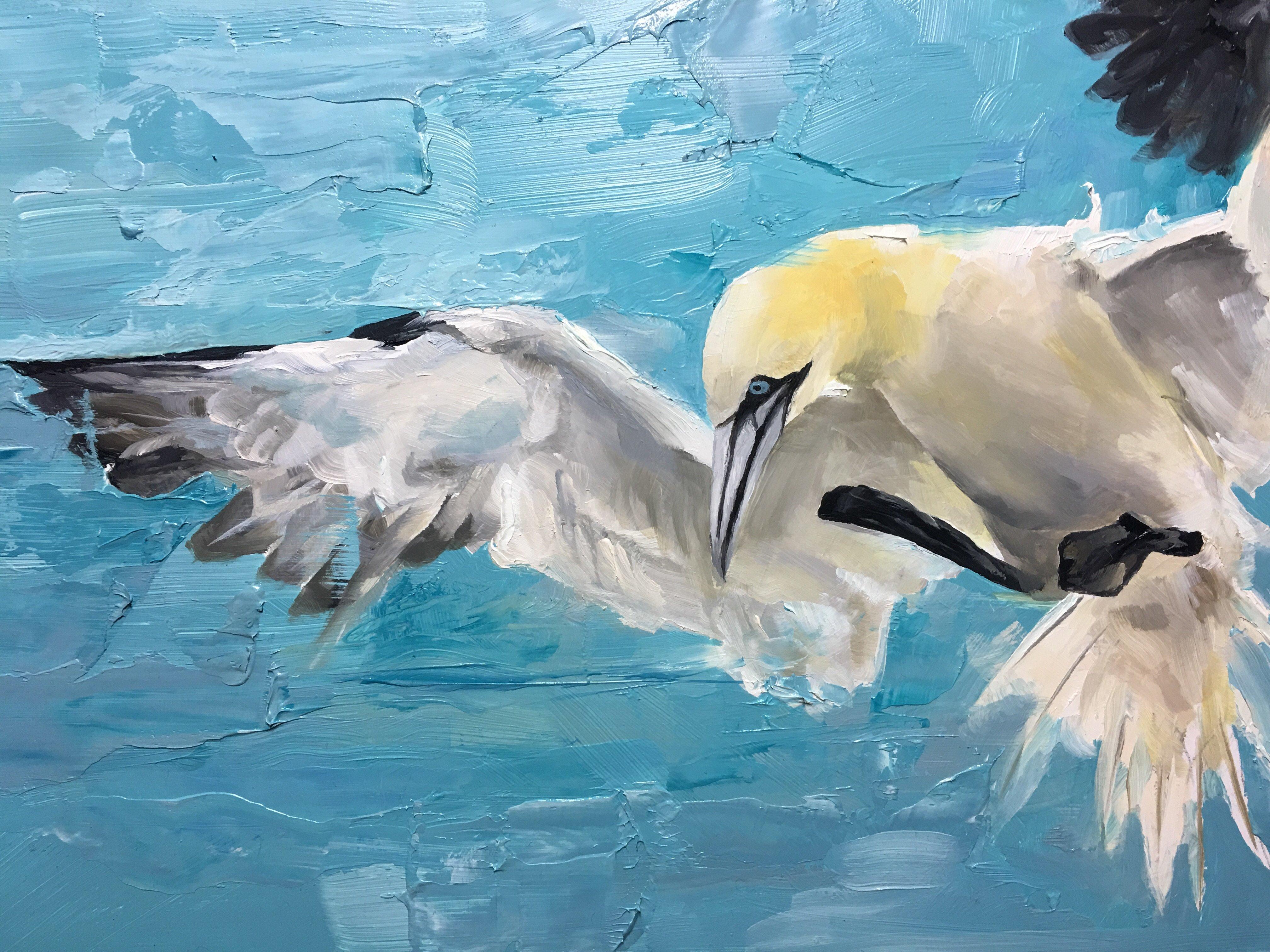 Gannet in flight , original oil painting - Matt Barratt-Jones Art