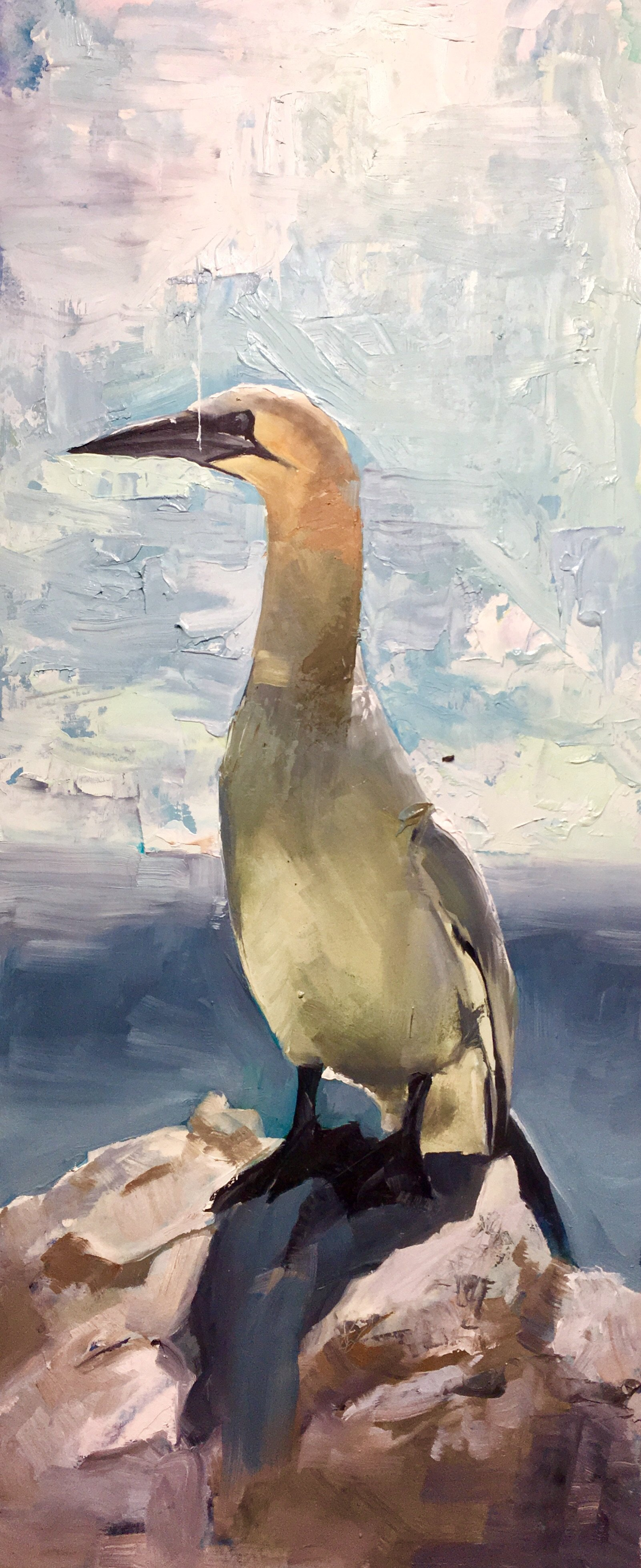 Perched Gannet Original oil painting - Matt Barratt-Jones Art