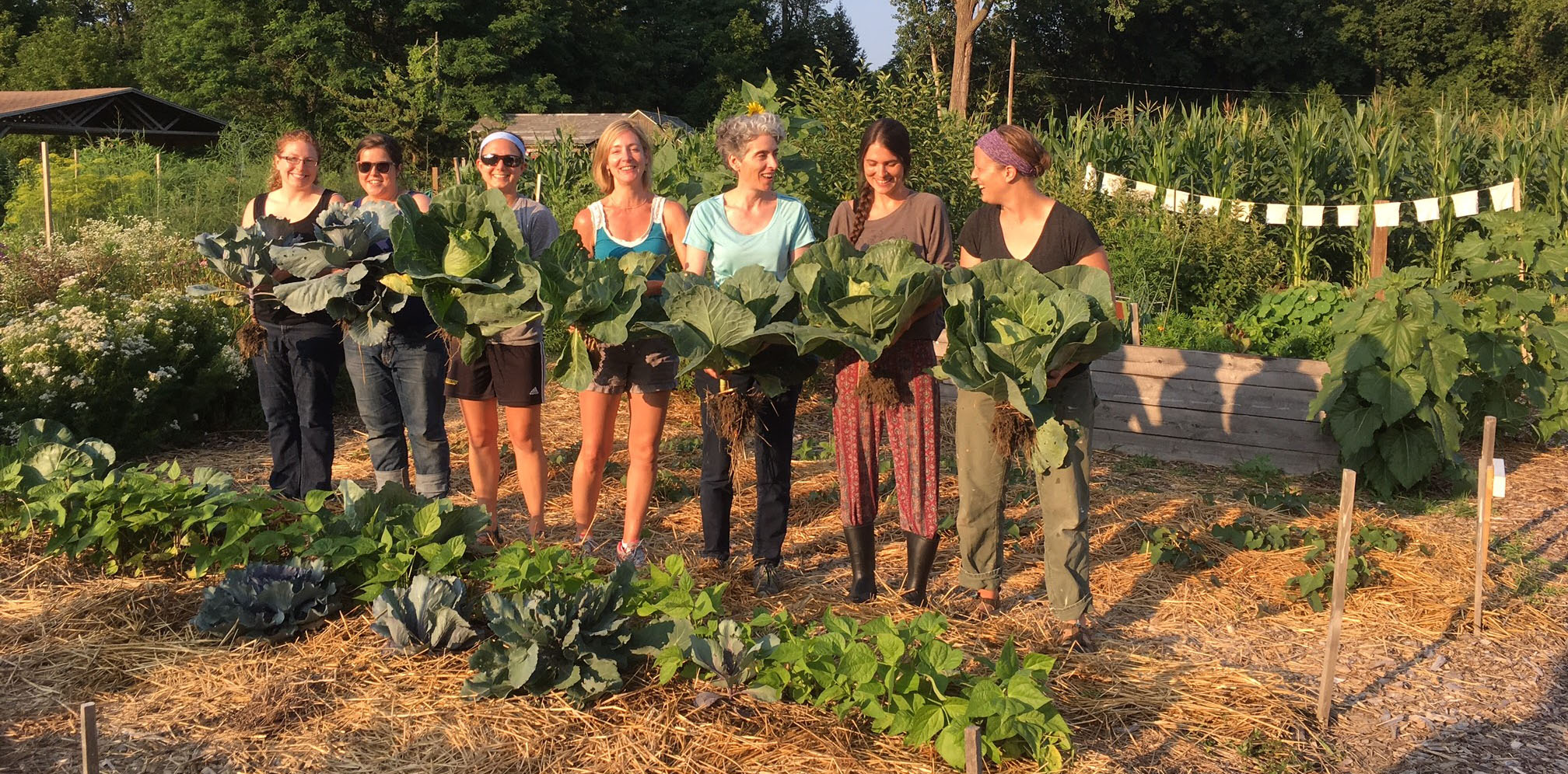 Community Teaching Garden — Vermont Community Garden Network
