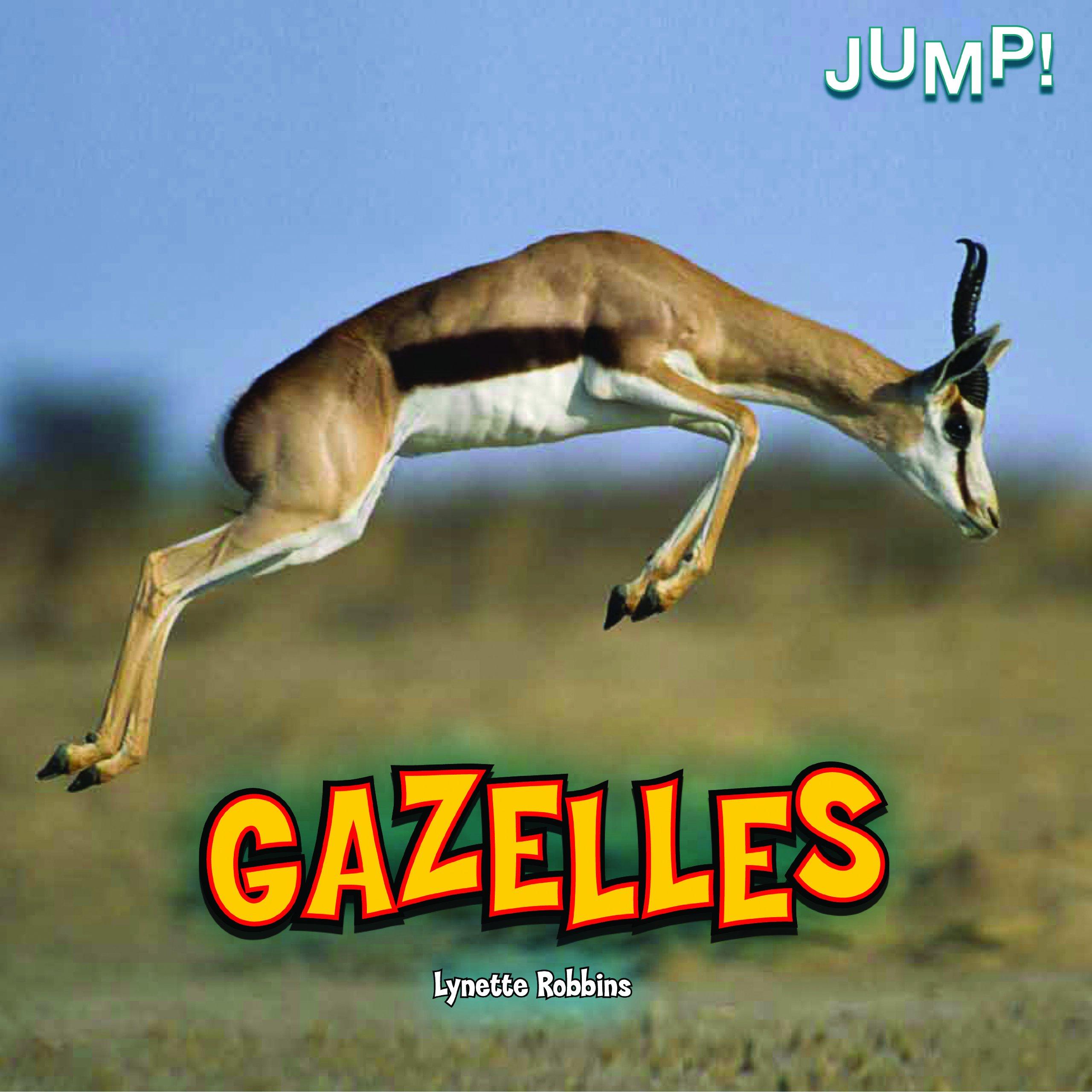 Gazelles photo