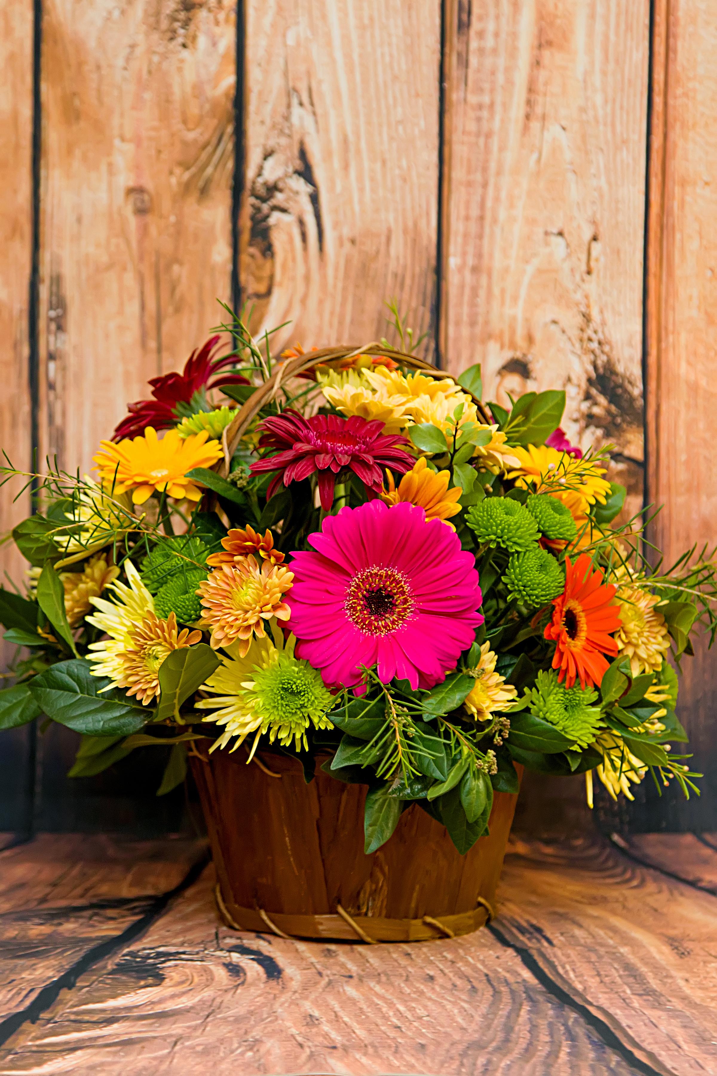 Gerbera Basket | Petals Designer Florist