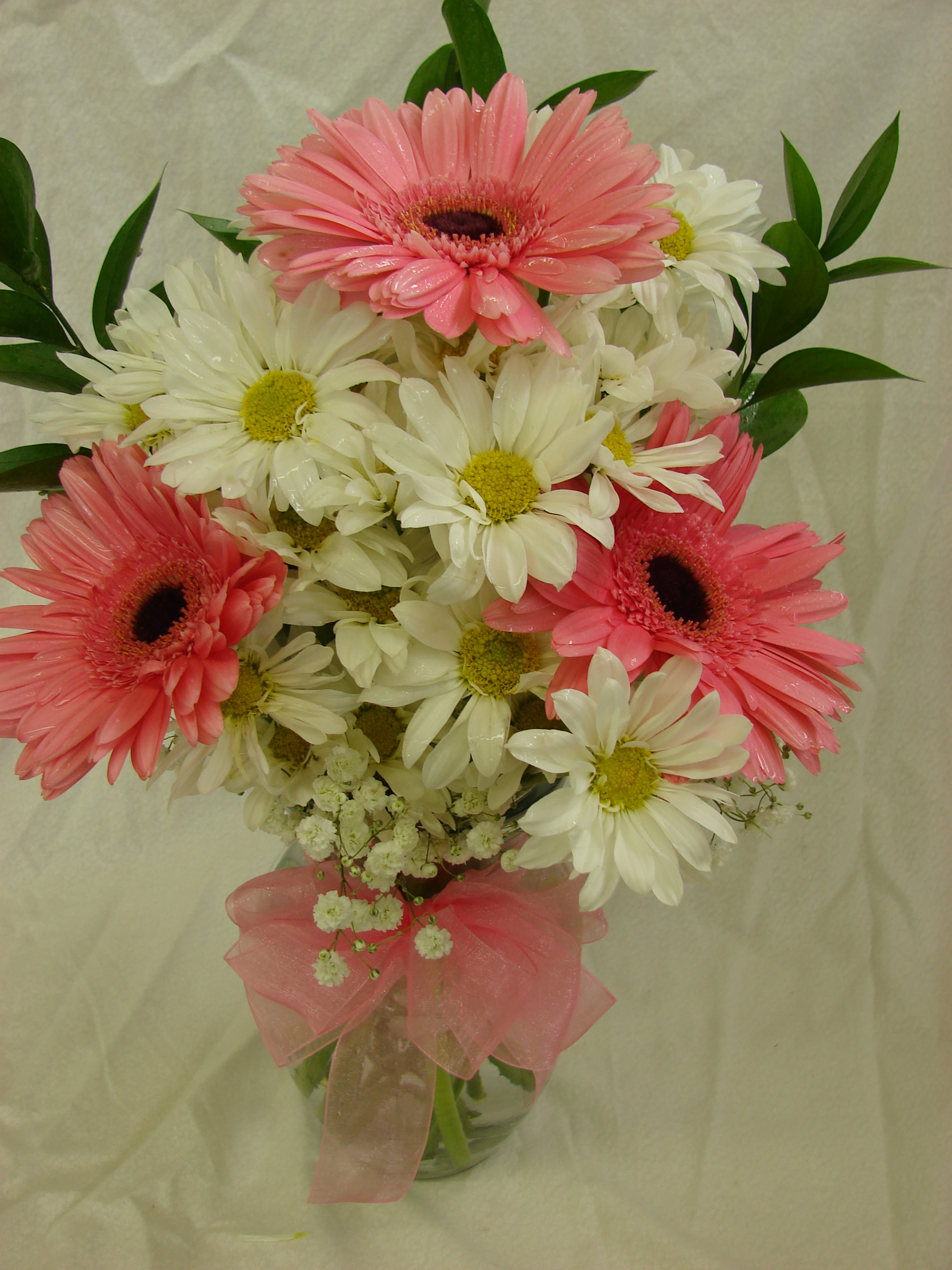 Gerbera Delight - Williams Fresh Floral