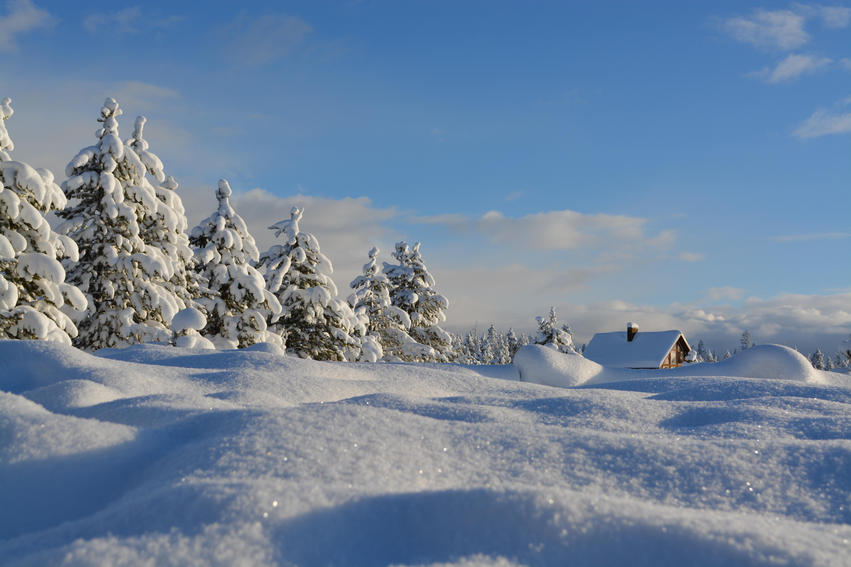 Getting Warm, Canada, Cold, House, Sun, HQ Photo