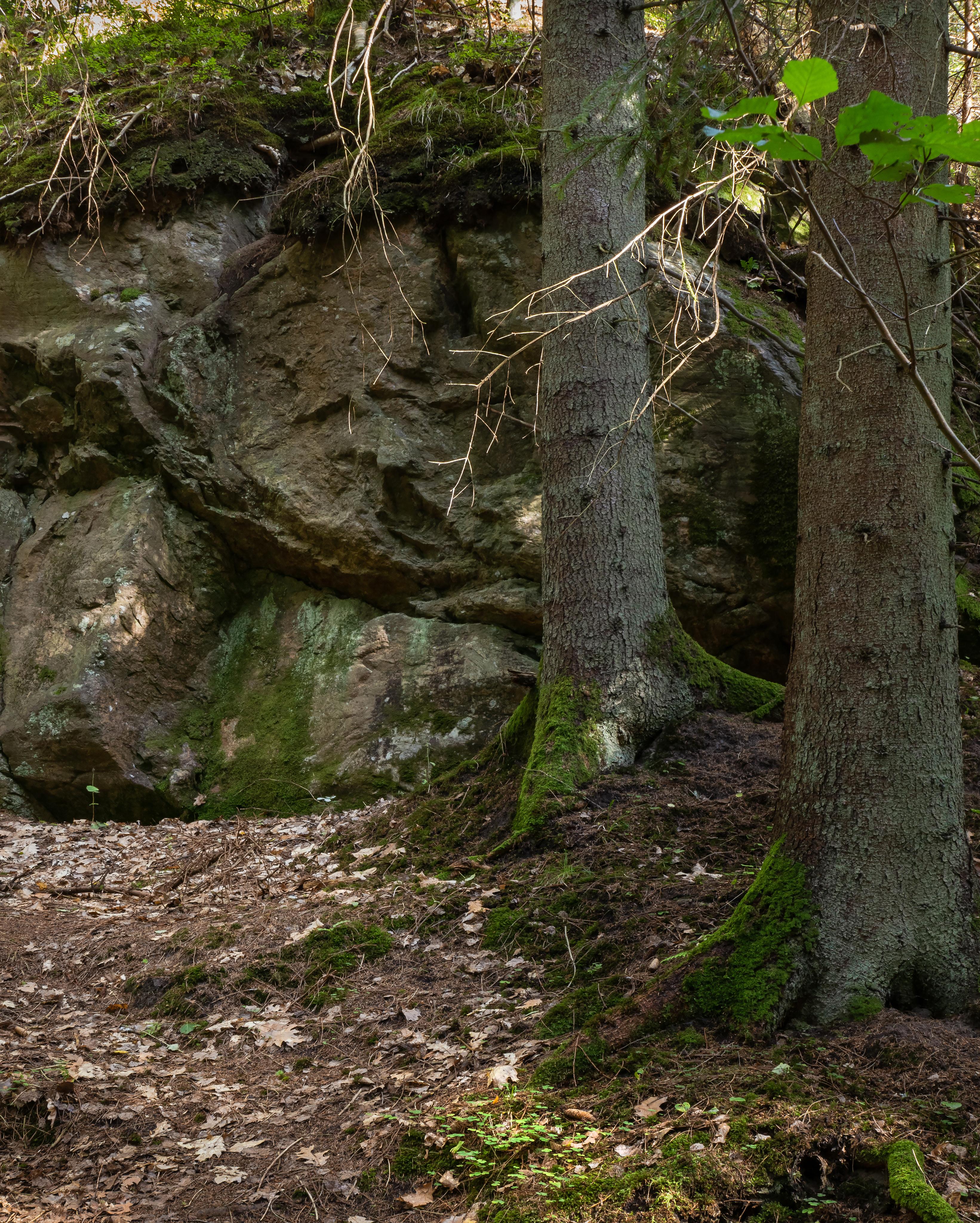 Giant boulder in gullmarsskogen ravine photo