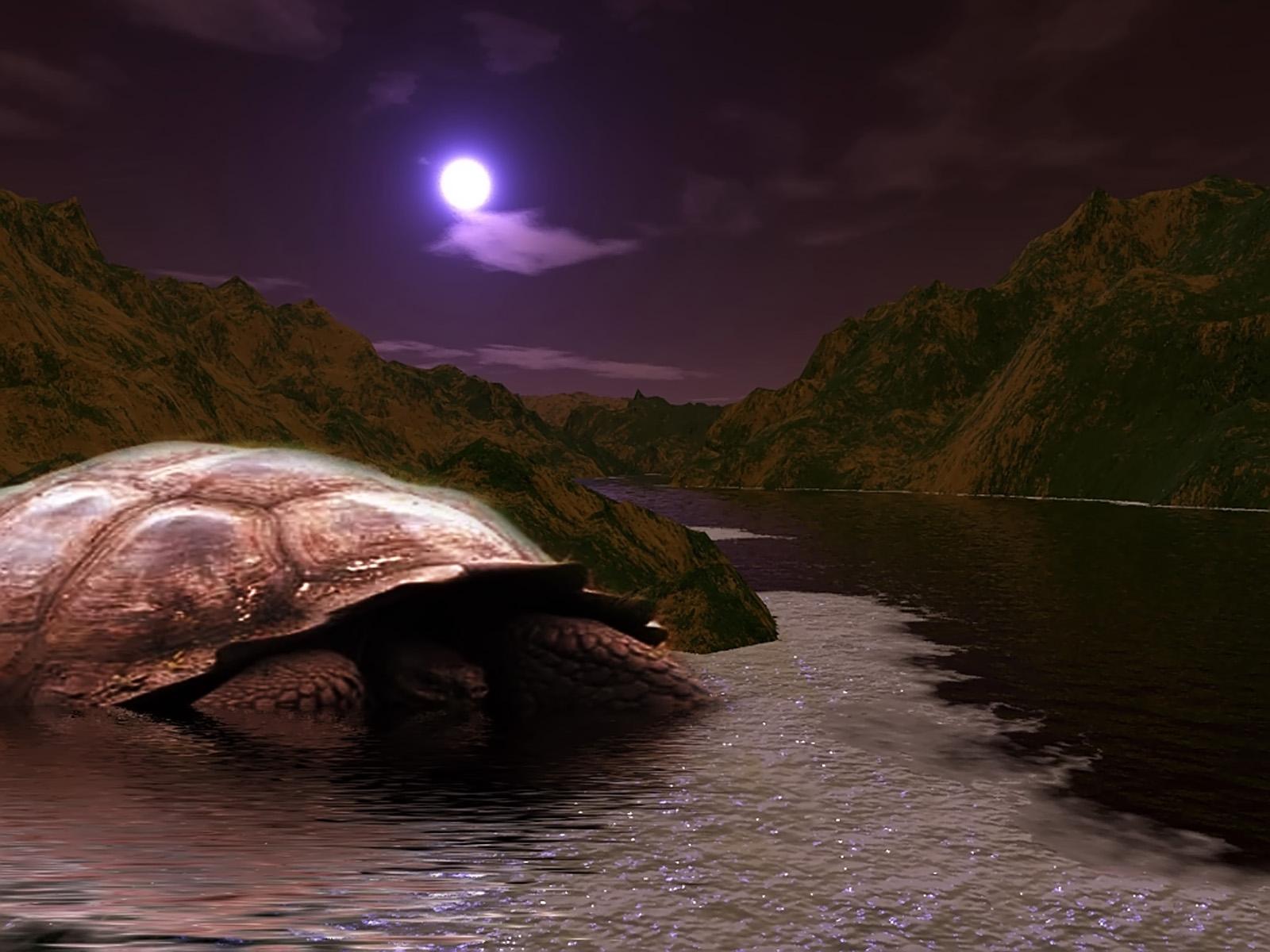 GIANT TURTLE, 3d, Bspo06, Dark, Landscape, HQ Photo