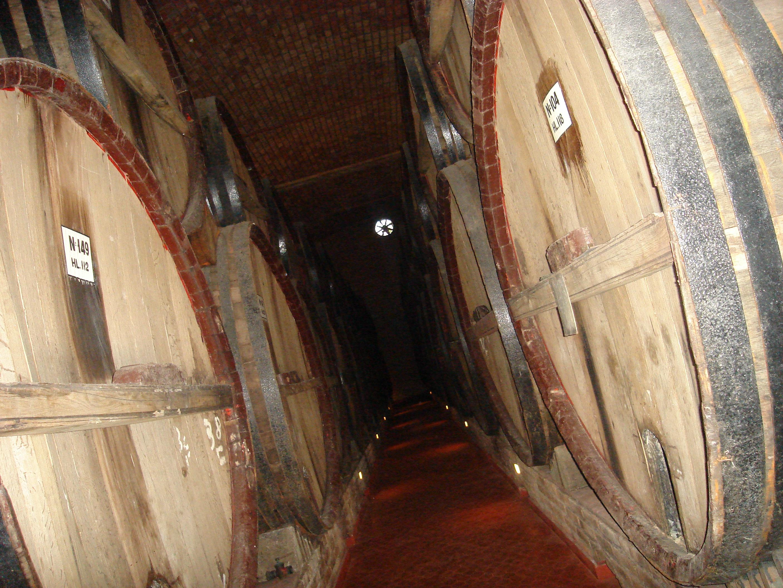 Free photo: Giant Wine Barrels - Wood, Wine, Large - Free