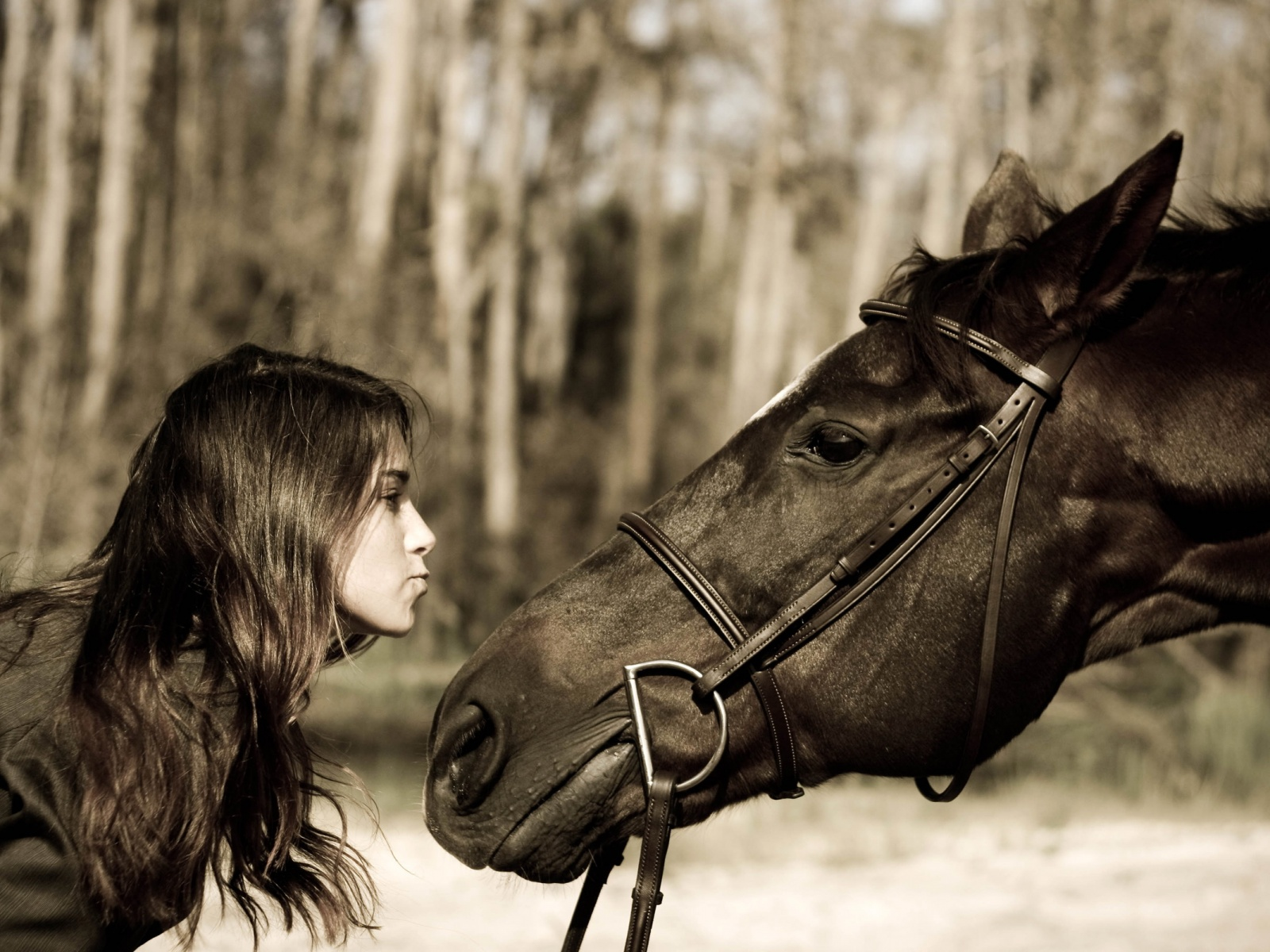 An Open Letter To The Girl Leasing My Horse