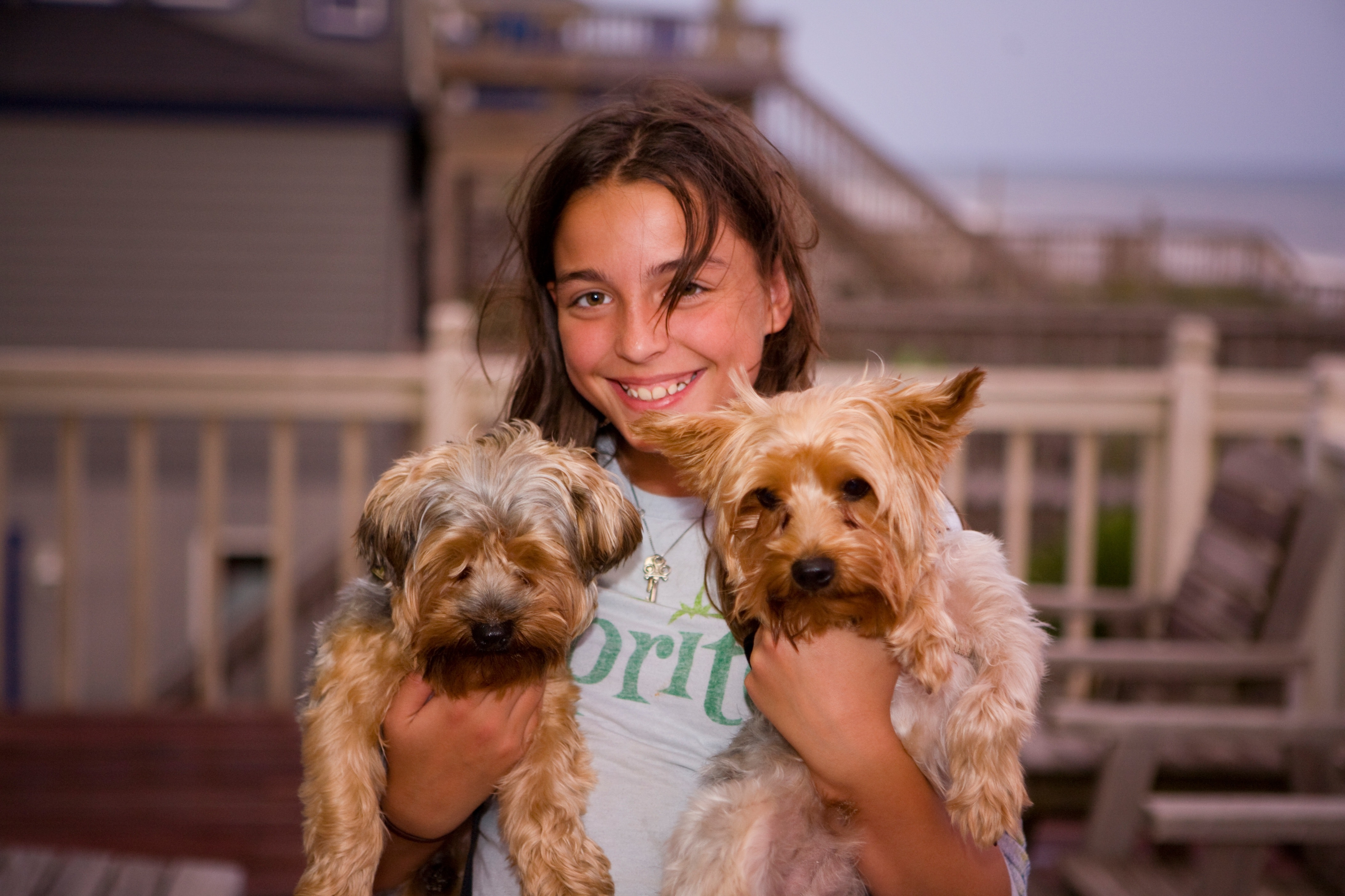 Girl holding 2 long coat small dogs smiling photo