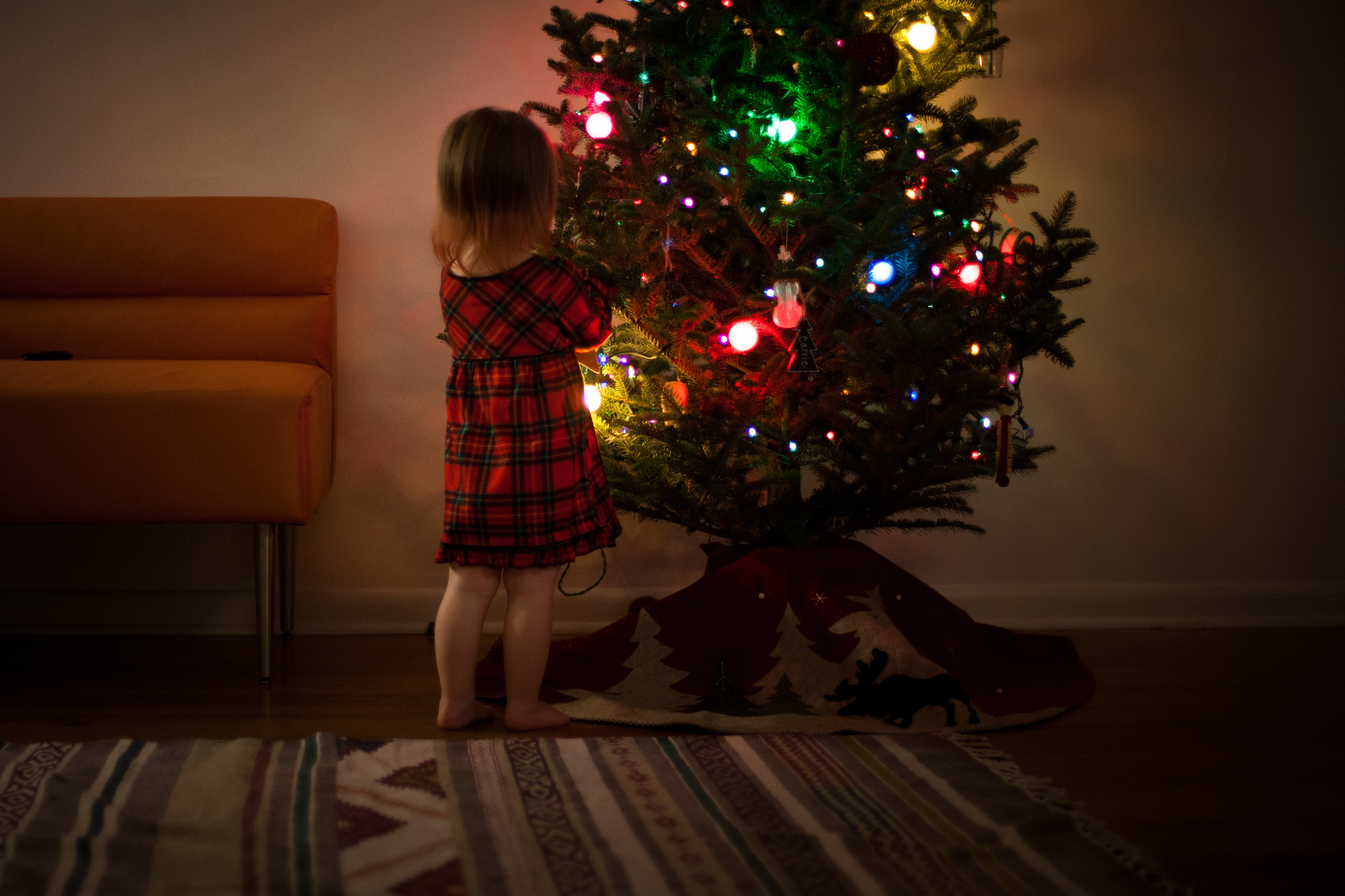 Girl in red and black dress standing in front of christmas tree inside room photo