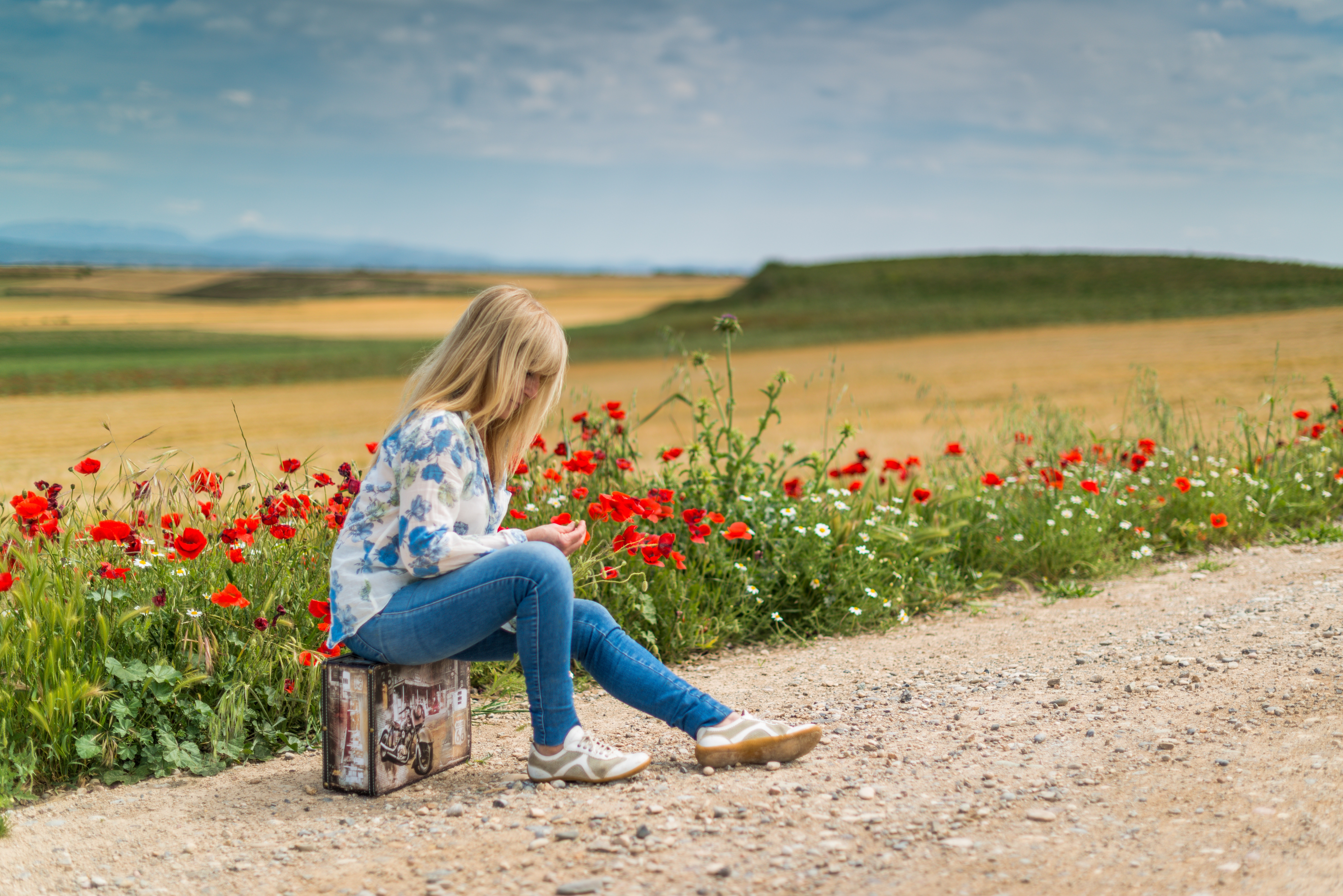 Girl Near Red Petal Flowers at Daytime, Blonde, Path, Way, Trail roads, HQ Photo