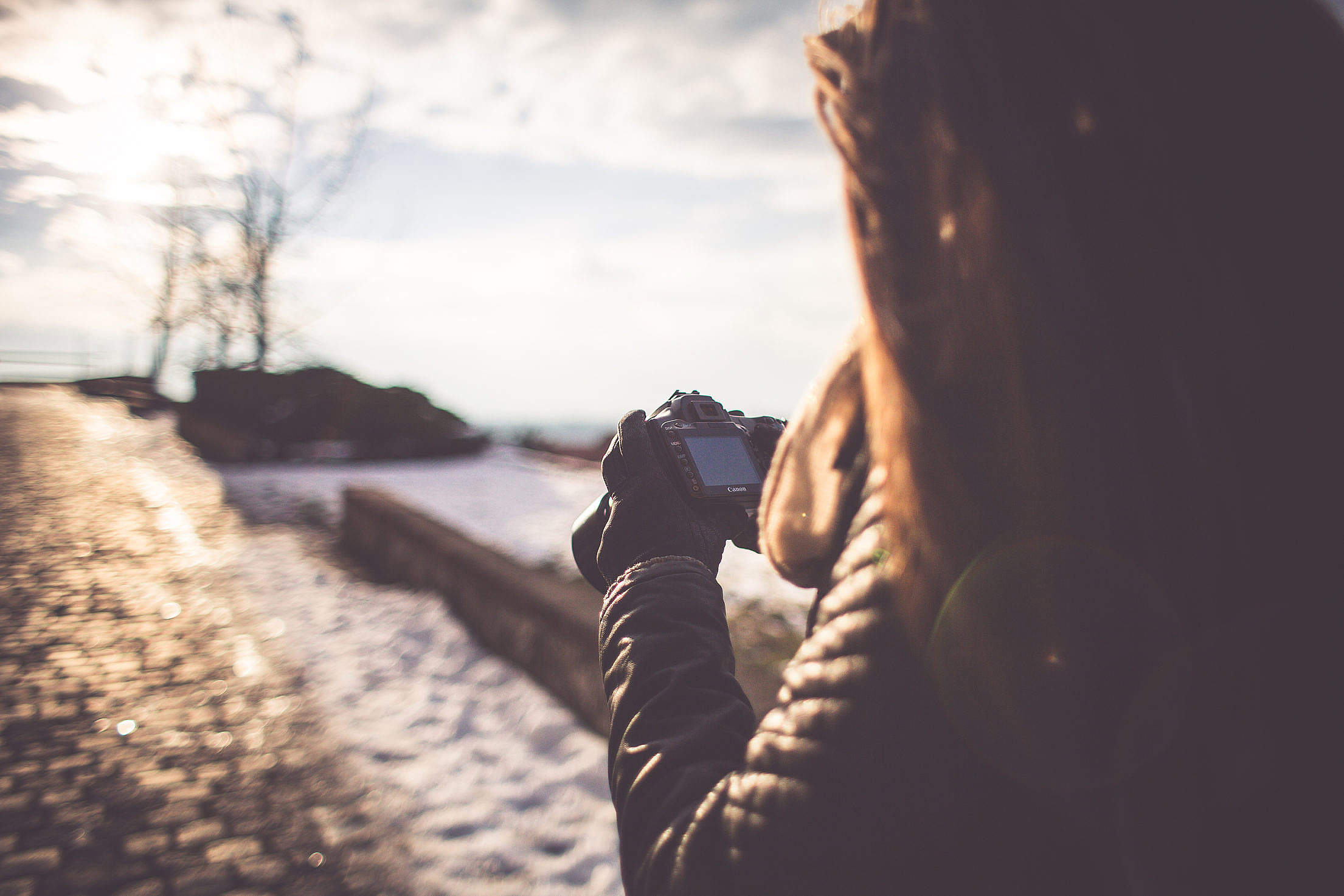 Girl Taking Photographs with her DSLR Free Stock Photo Download ...