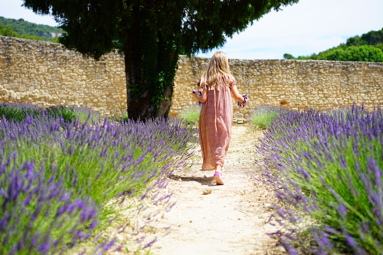 Girl wearing pink dress running on trail between purple flower field photo