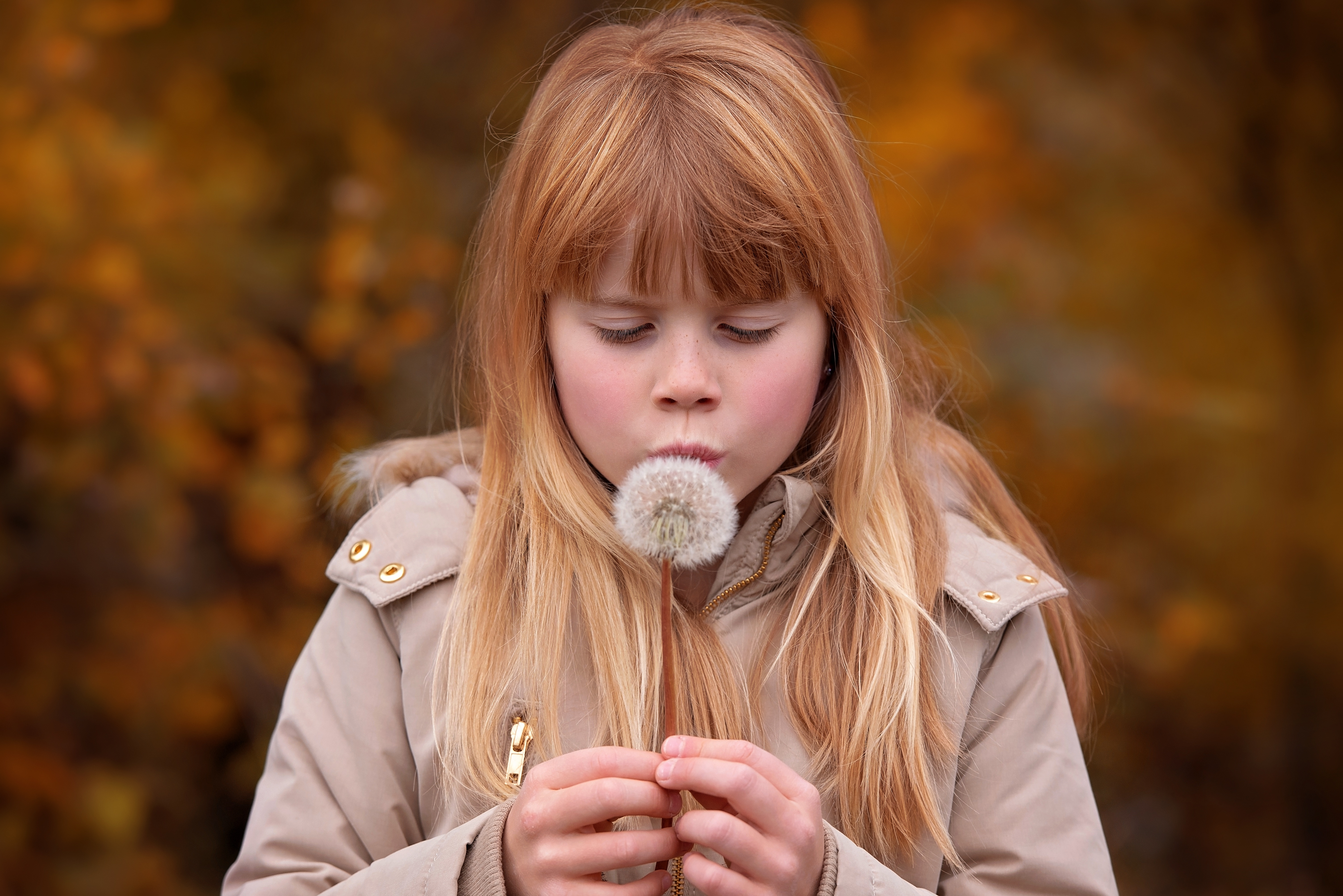 Girl with a dandelion photo