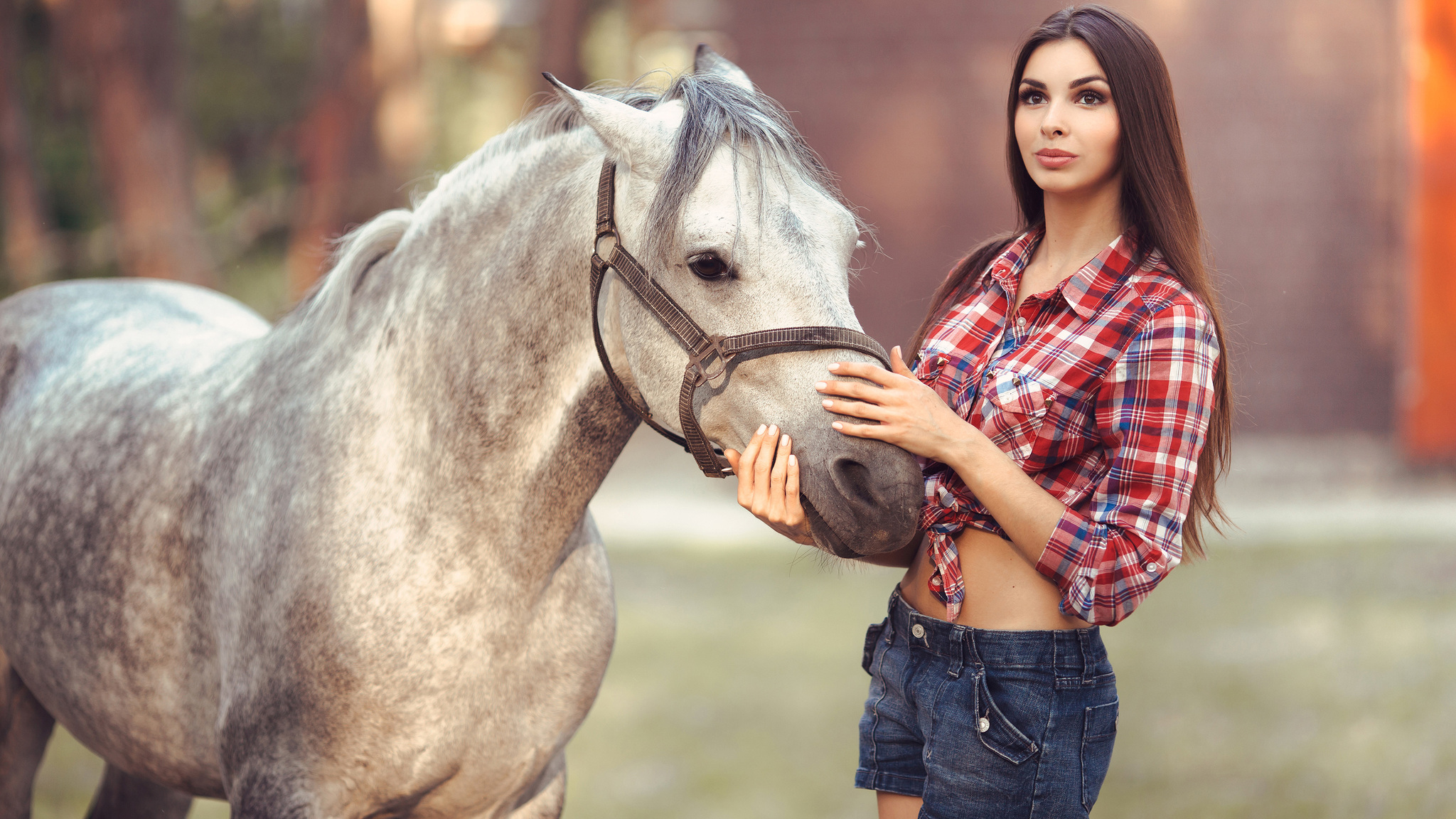 2048x1152 Beautiful Girl With Horse 4k 2048x1152 Resolution HD 4k ...